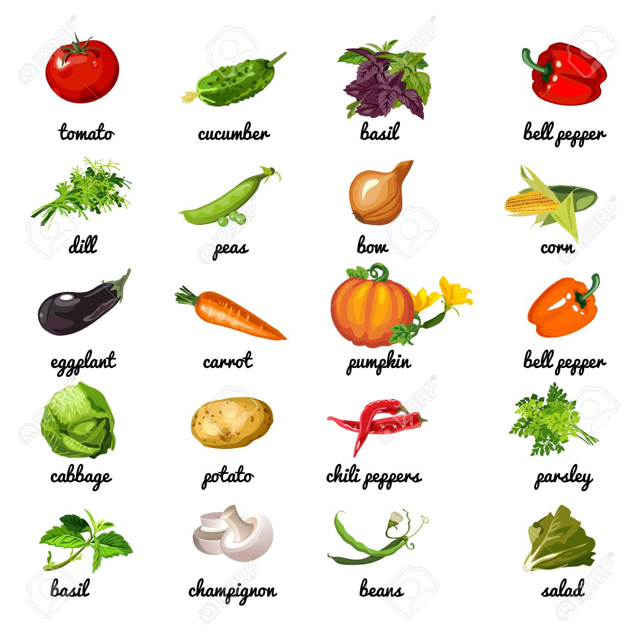 Cute poster on topic of healthy diet  Vegetables and herbs are
