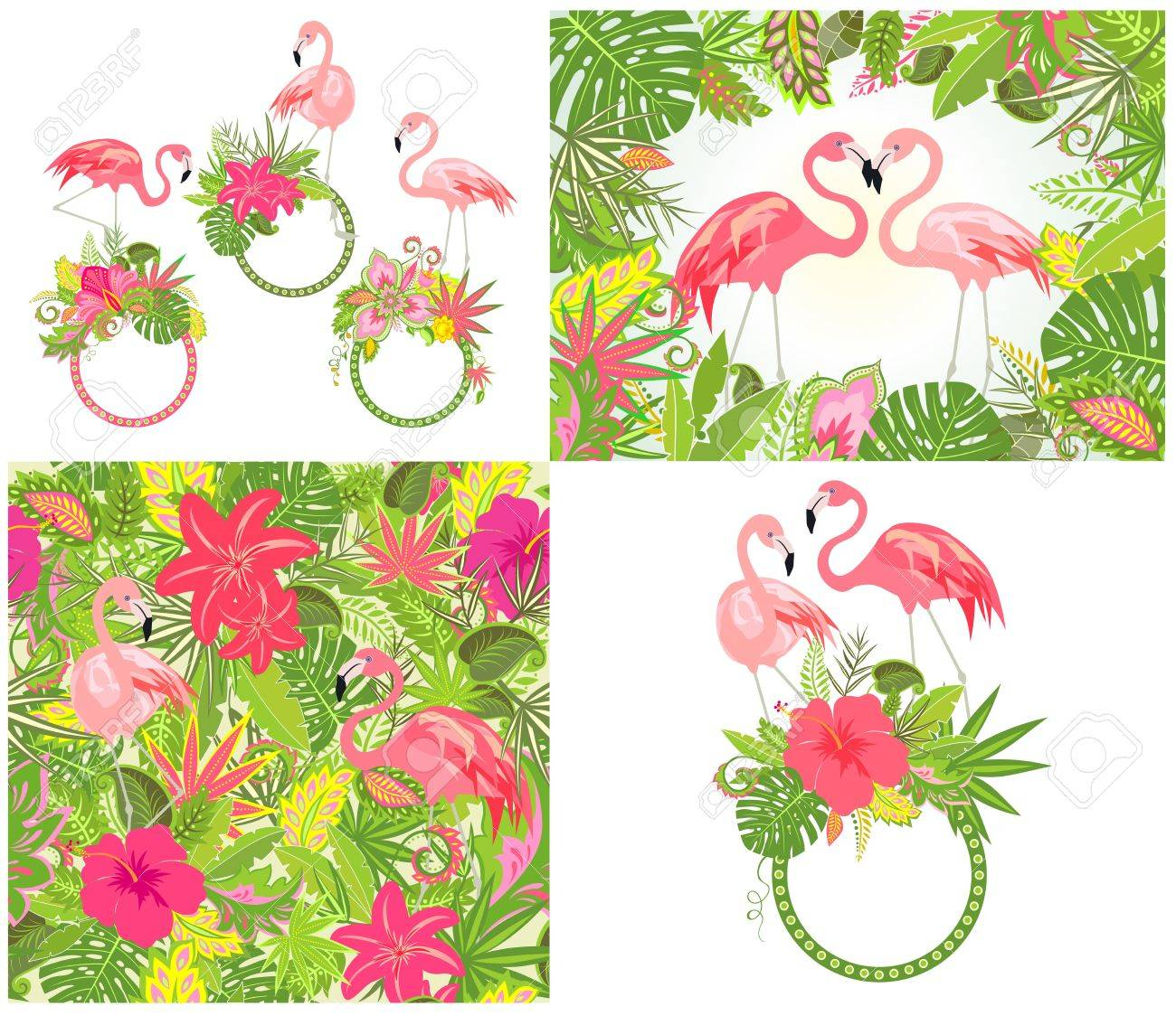 Hermoso Diseño De Boda Y Fondo De Pantalla Con Flores Exóticas ...