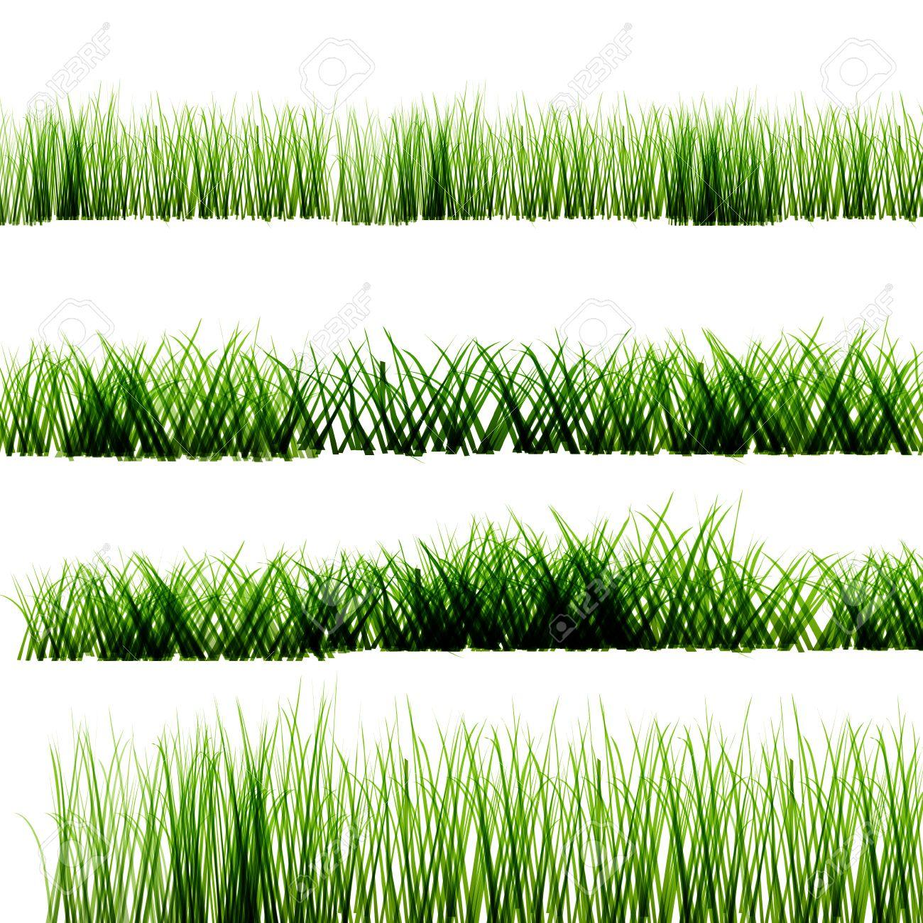 grass transparent background. Green Grass On Isolated Transparent Background Stock Vector - 60693003 R