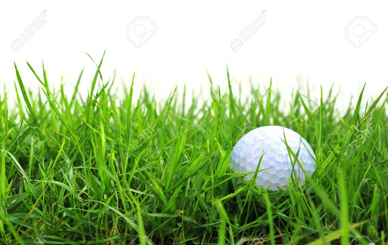 golf ball in the rough Stock Photo - 14642922