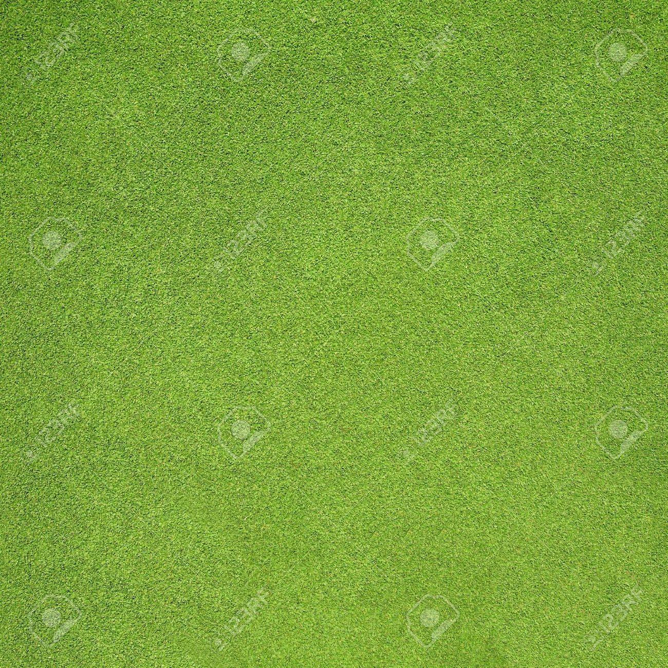 Grass - 16272965