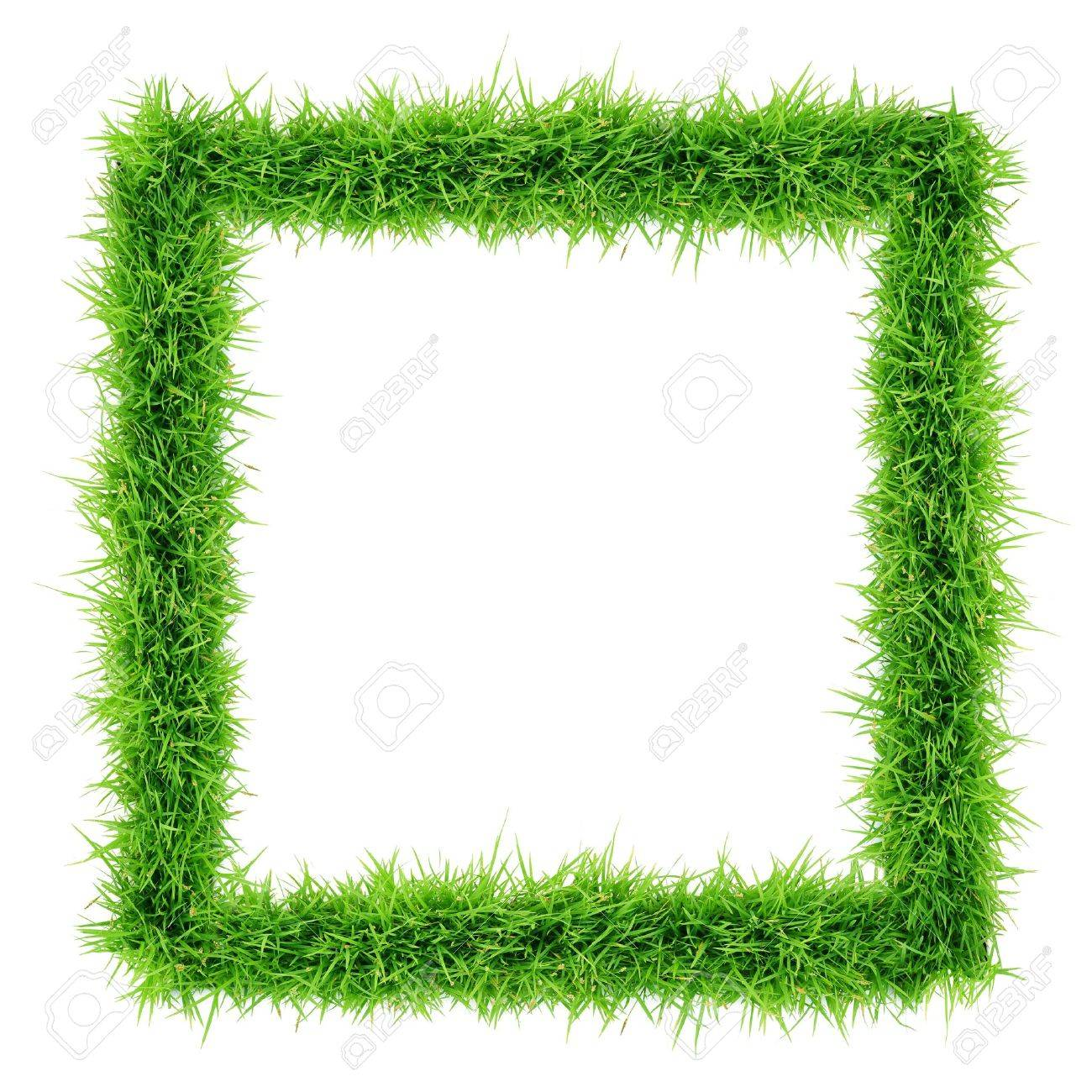 grass frame top view on white background - 20178220