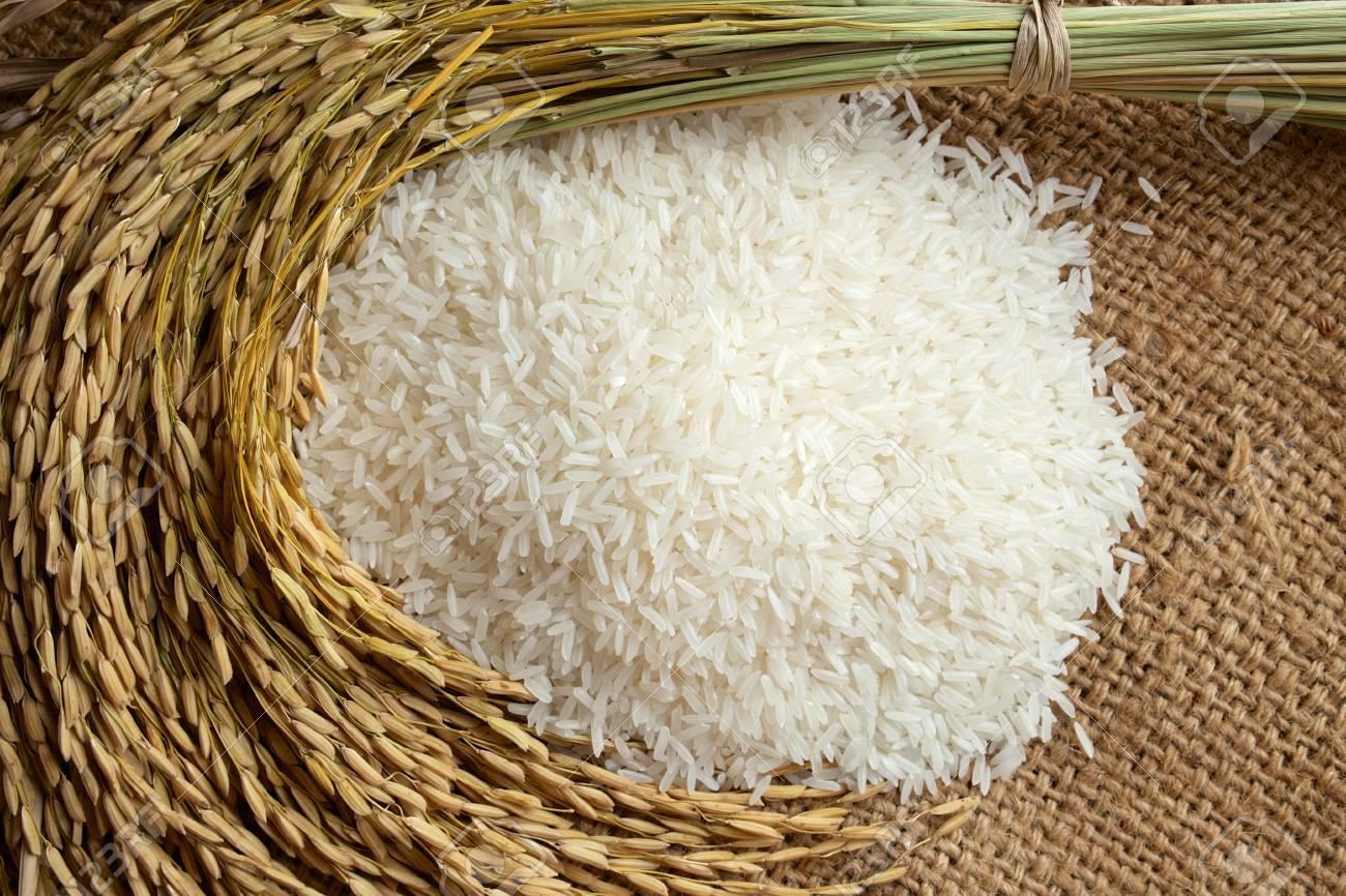 white rice with rice grain - 32363482