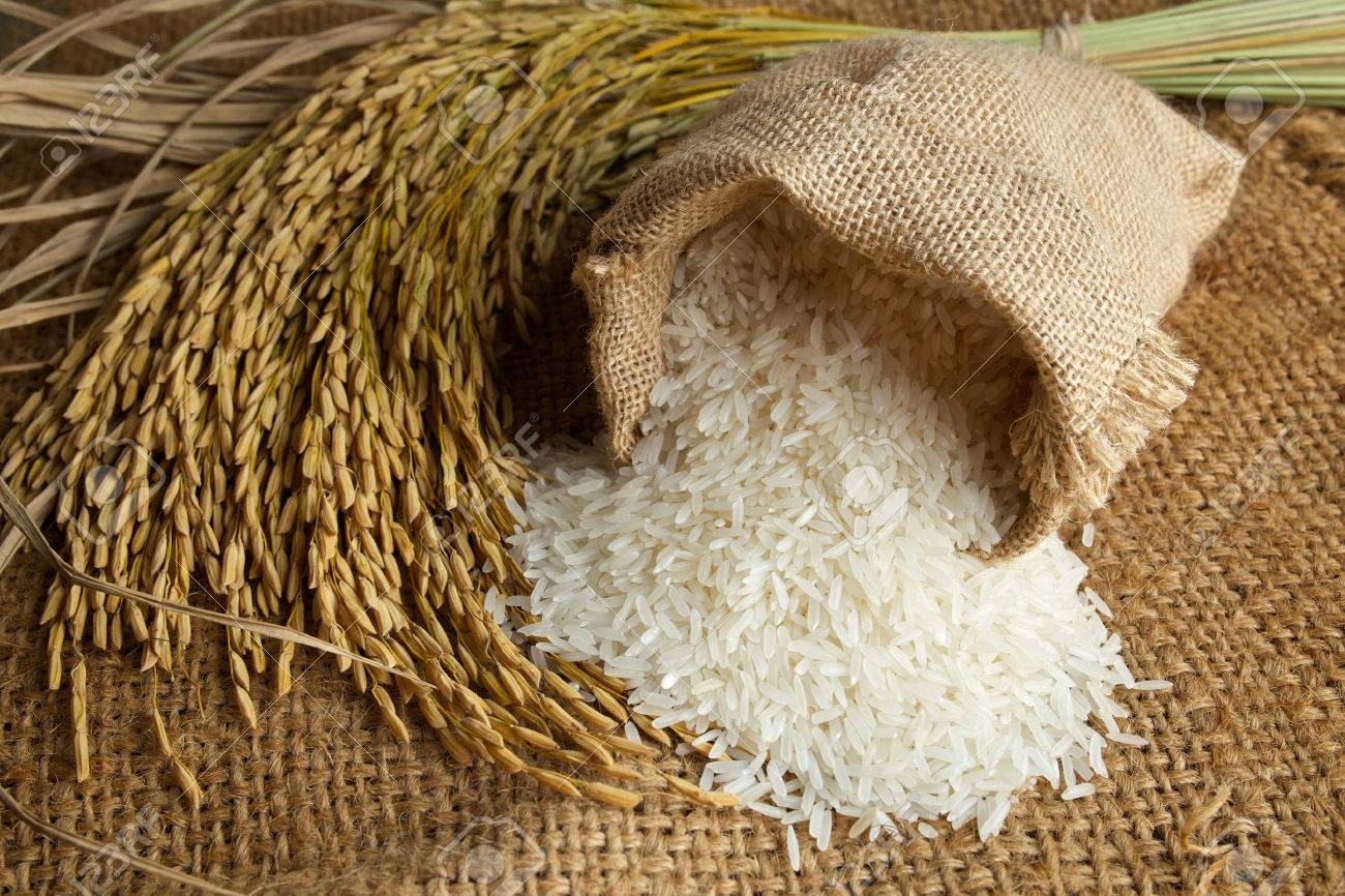white rice in burlap sack with rice grain - 32363484