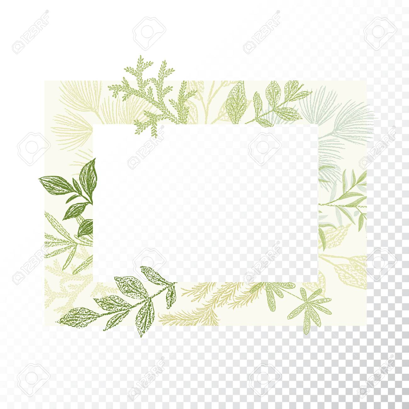 Rectangular Floral Frame Ornament Vector Green Branches And Leaves Border Transparent Background Stock