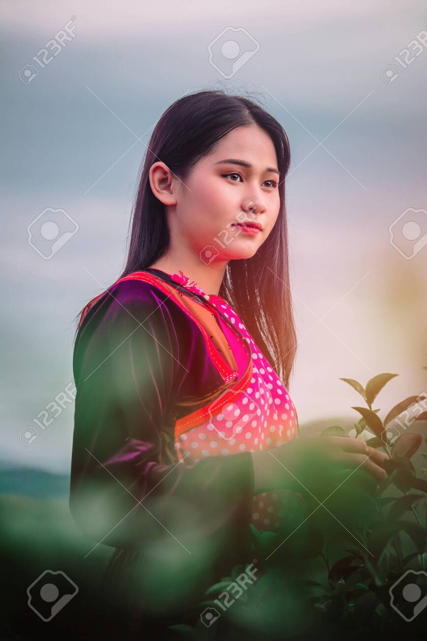 Women And Friend In Tea Farm Chiang Rai Thailand Asia Stock Photo Picture And Royalty Free Image Image 132276908