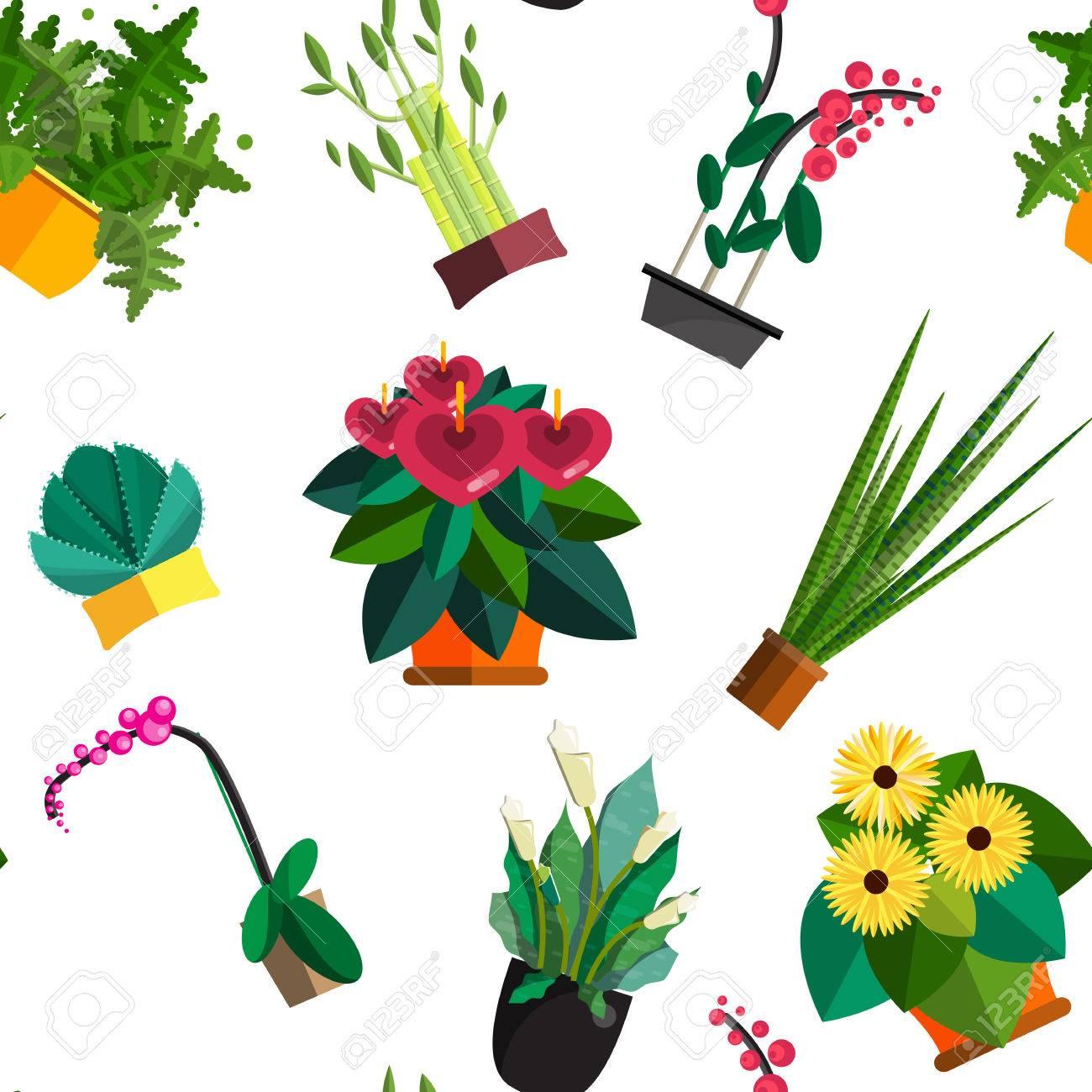 Nahtlose Muster Von Zimmerpflanzen Innen Und Buropflanzen Im Topf