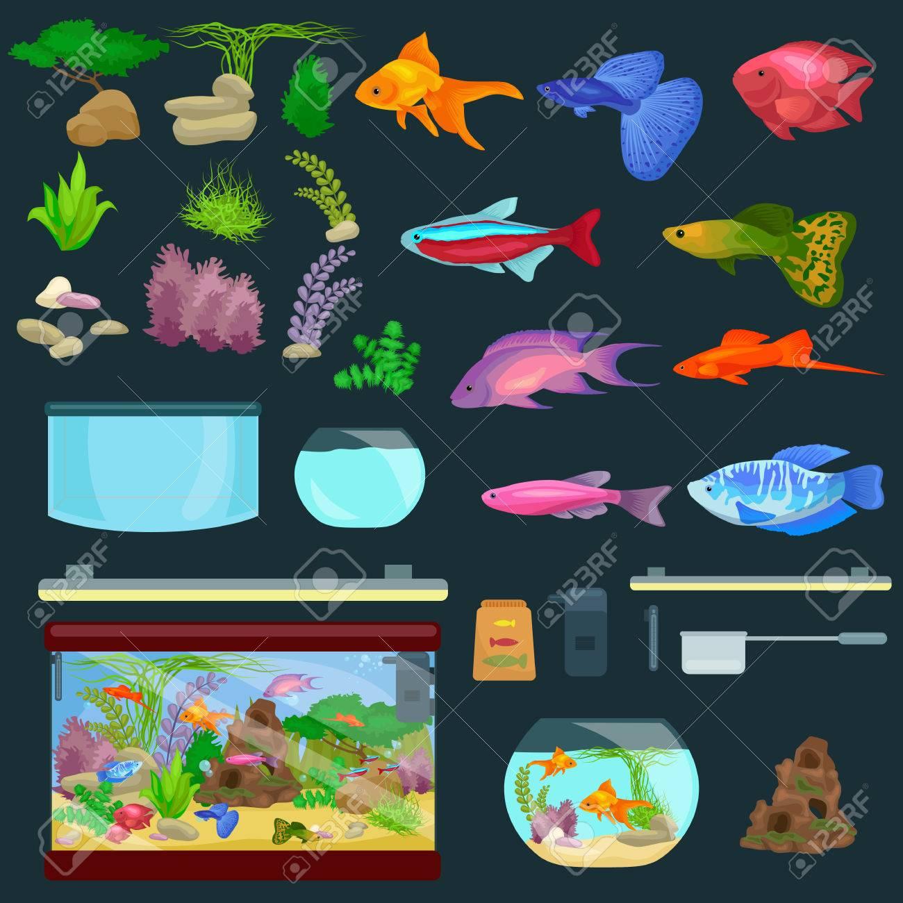 Aquarium fish, seaweed underwater, banner template layout with marine animal vector illustration - 57030662