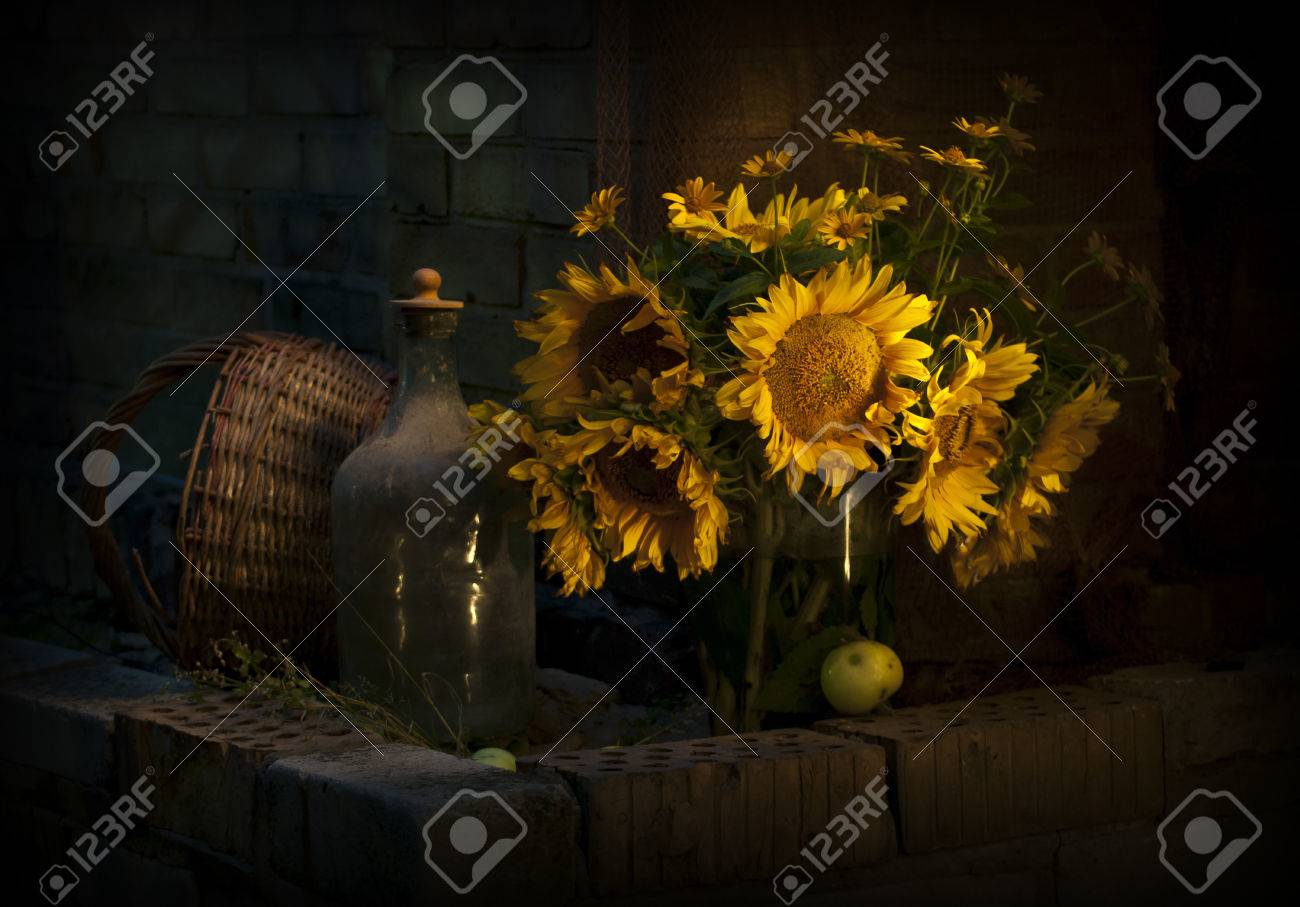 Still Life With Sunflowers Photo In Low Key Stock