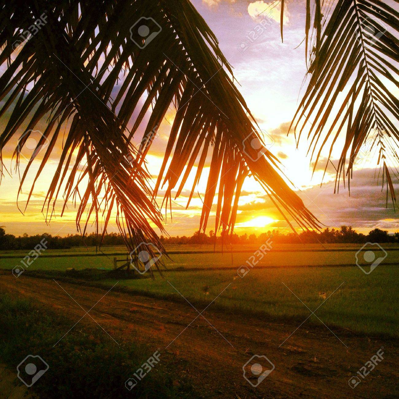 Morning in thailand Stock Photo - 22125234