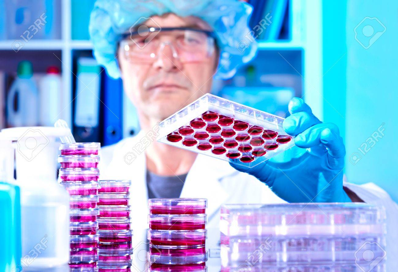Senior tech works with cultured cells in modern lab Stock Photo - 14787083