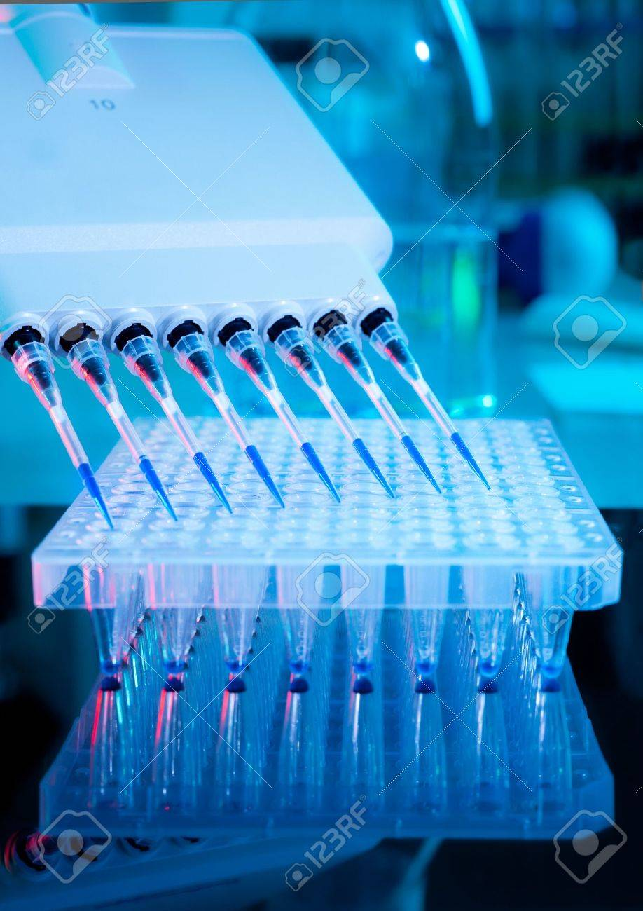 Setting up DNA amplification assay Stock Photo - 14966317