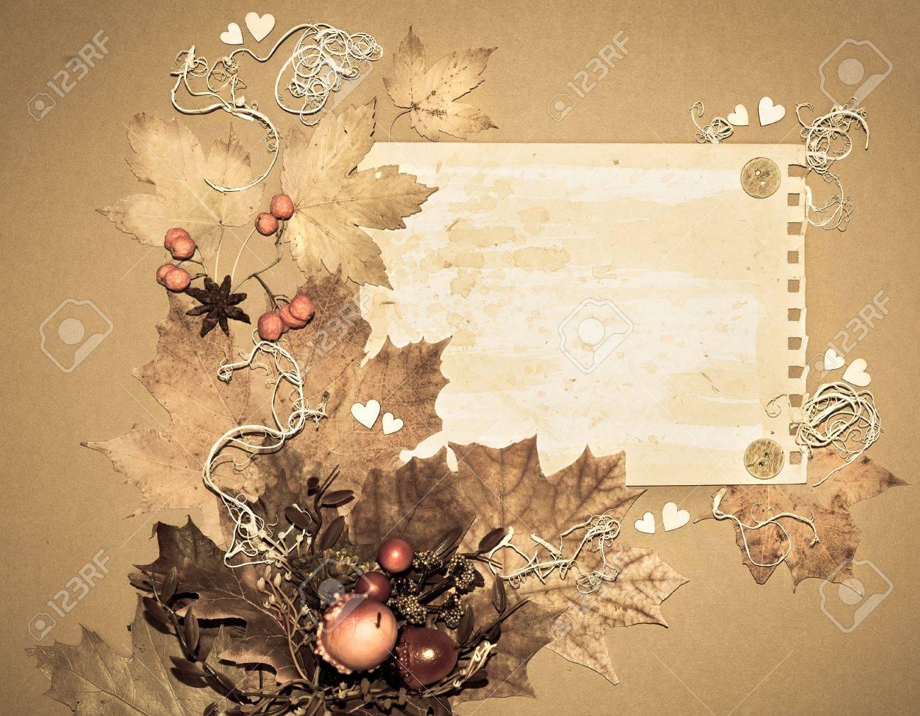 Papier Rahmen Mit Herbst Blätter, Wurzeln, Vogelbeeren Und Pappe ...