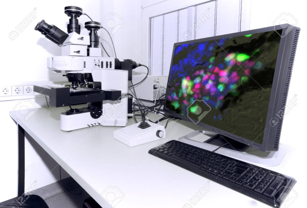 Modern microscope equipped with digital camera, computer and monitor - 32881830