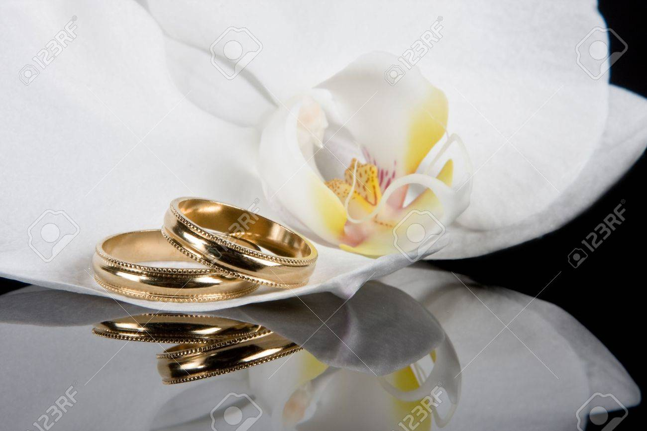 Wedding Rings Lying On White Orchid Flowers Stock Photo Picture