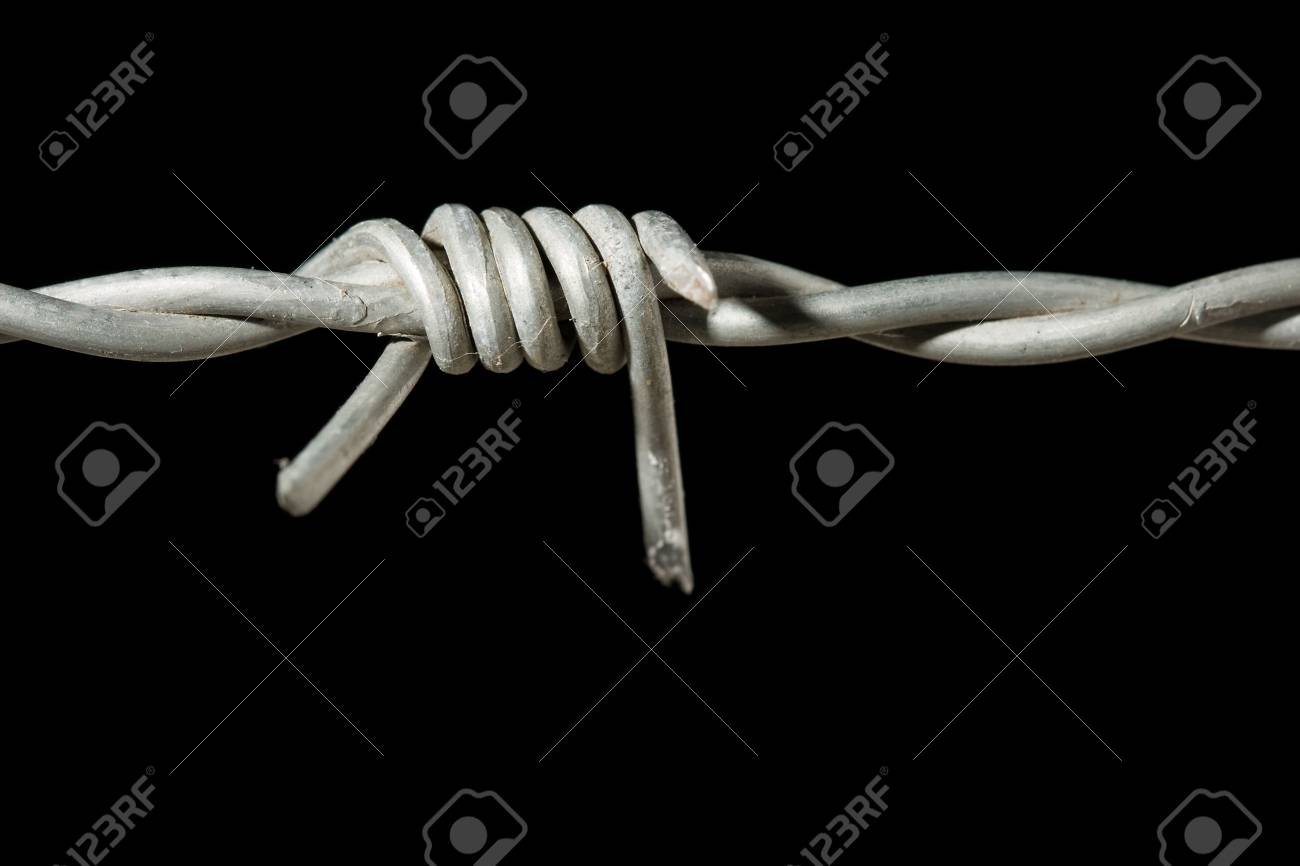 Detail of one spike of barbed wire Stock Photo - 5869664