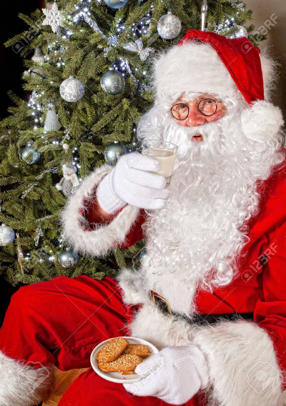 Santa claus in front of a christmas tree eating cookies and milk Stock Photo - 10842465
