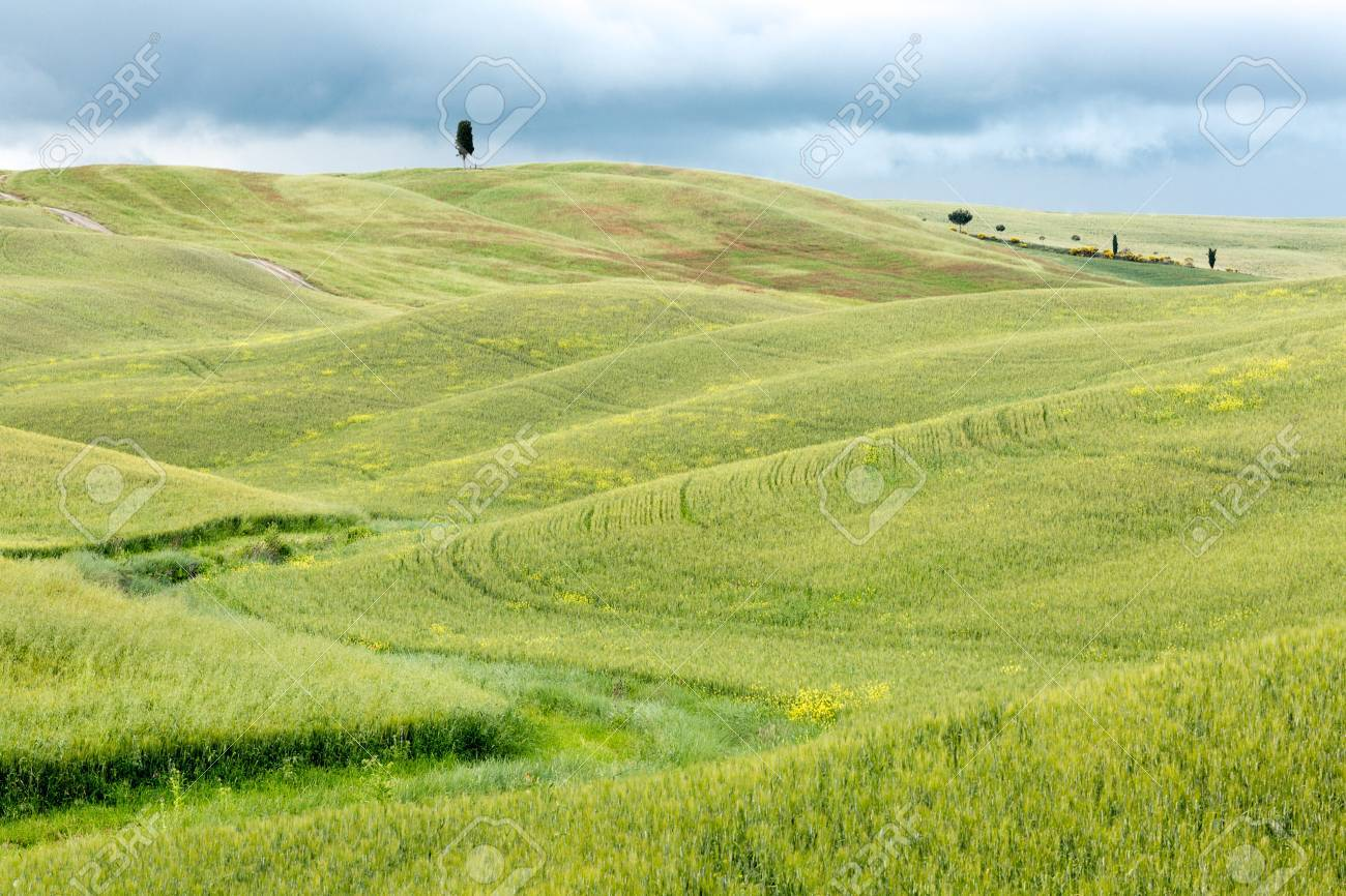 Springtime green hills in a Tuscan valley in Val d'Orcia Italy Stock Photo - 14310936