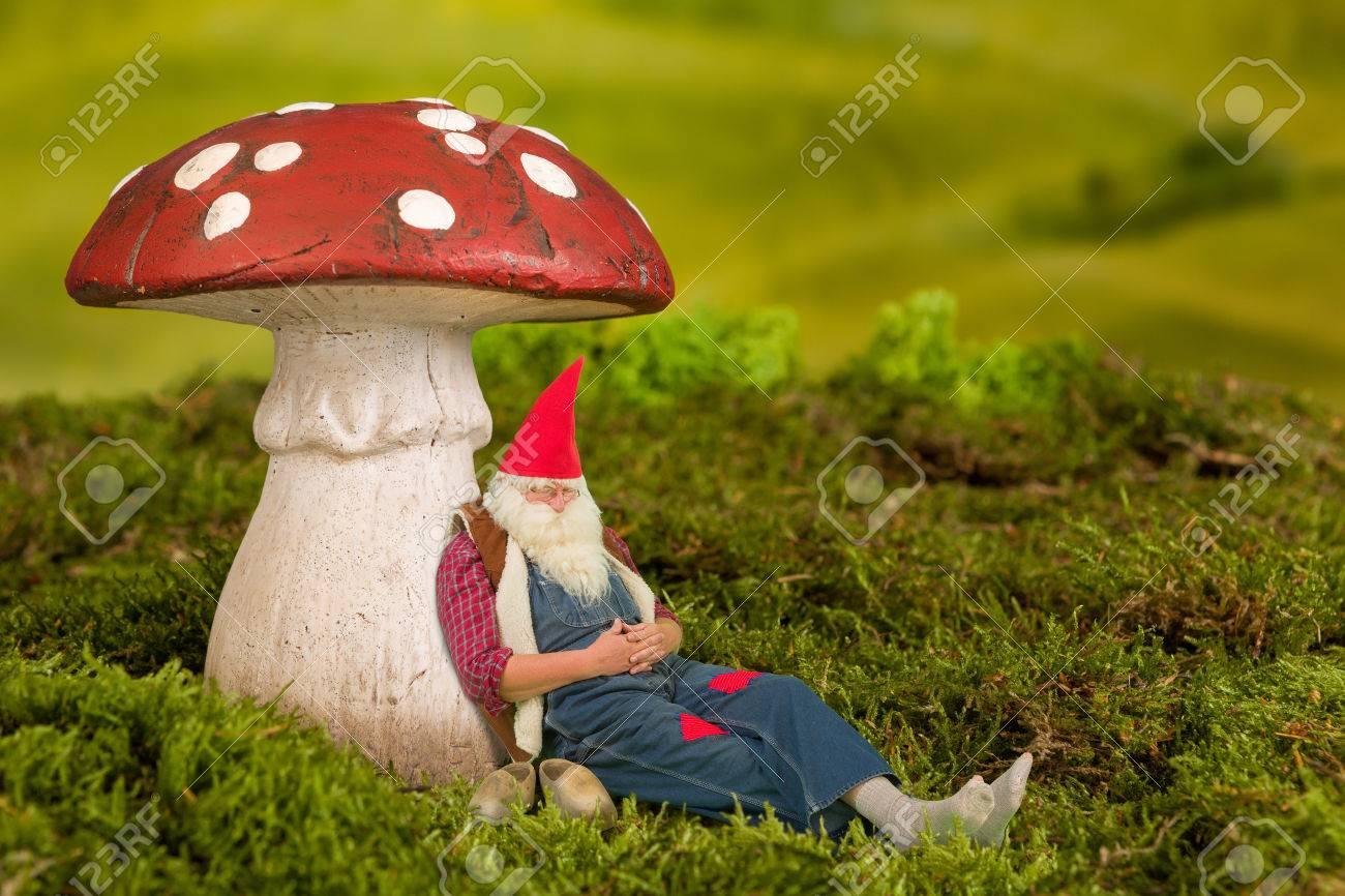 Musique à écouter sous champis 36930457-sleepy-nain-de-jardin-couch%C3%A9-sous-un-champignon-de-conte-de-f%C3%A9es