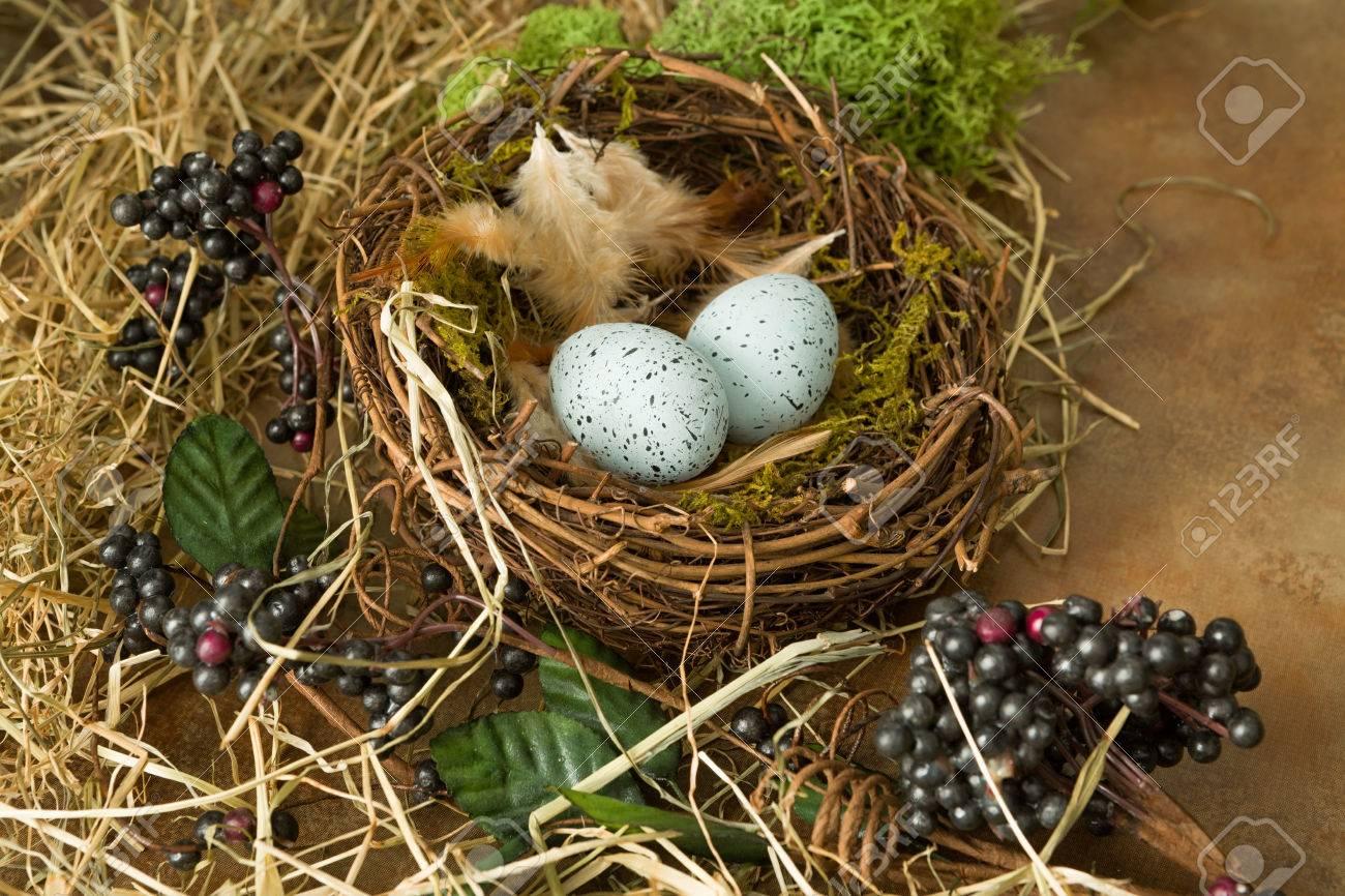 Rahmenbild Aus Beeren, Frühlingsblättern Und Vogelnest Lizenzfreie ...