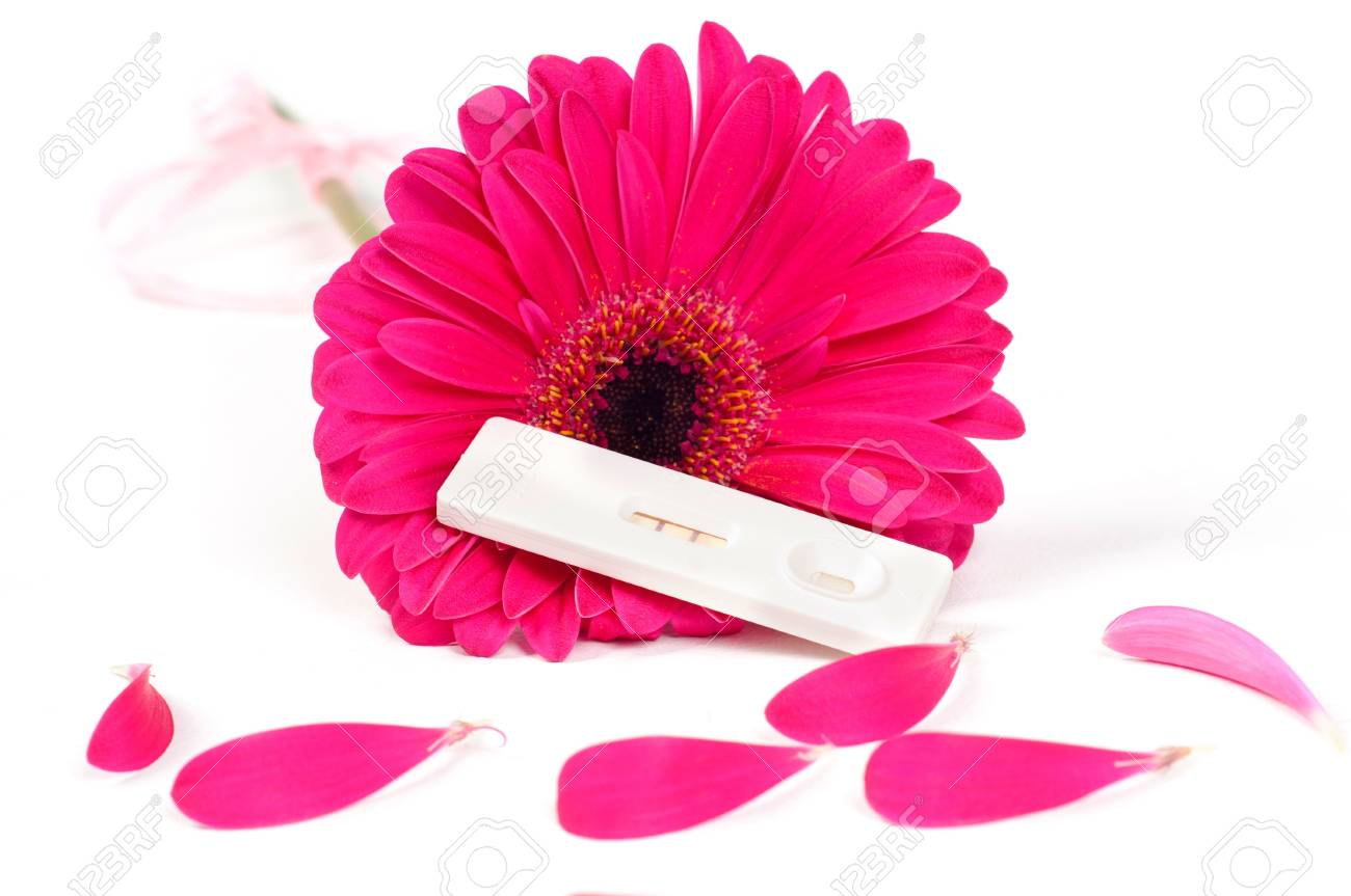 Positive pregnancy test and gerbera - 8881849