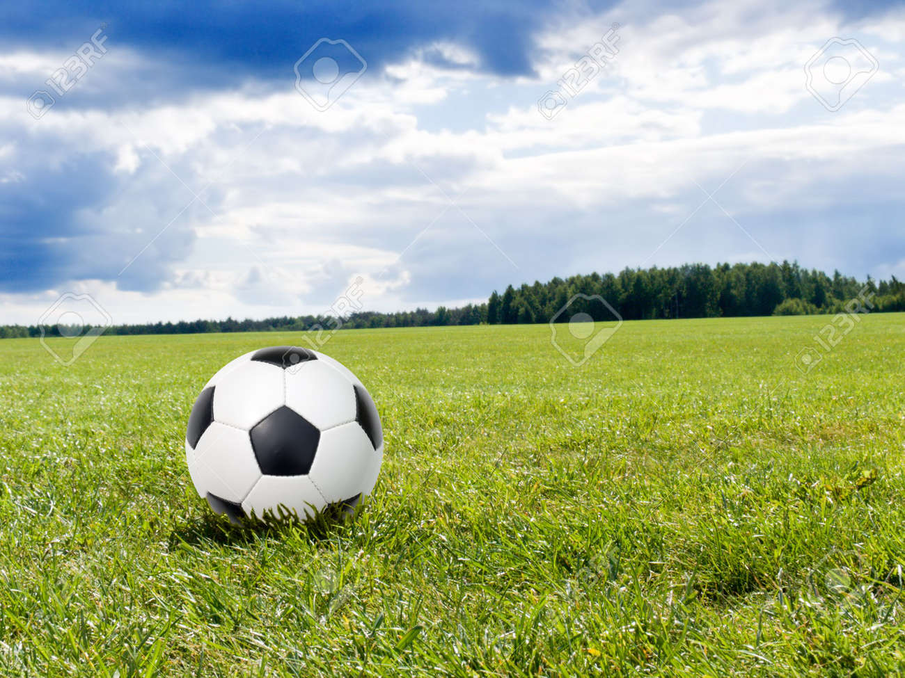 soccer ball on a natural lawn Stock Photo - 4706626