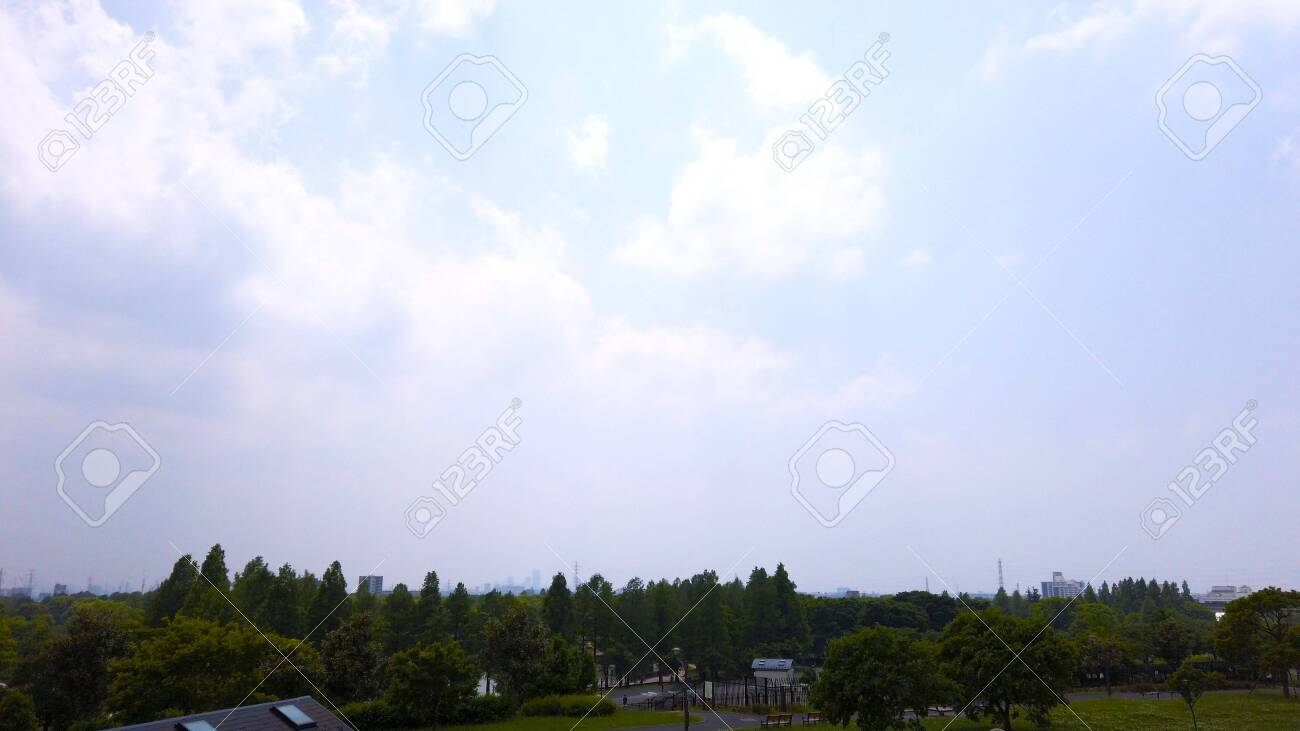 Trees and blue sky - 147227604