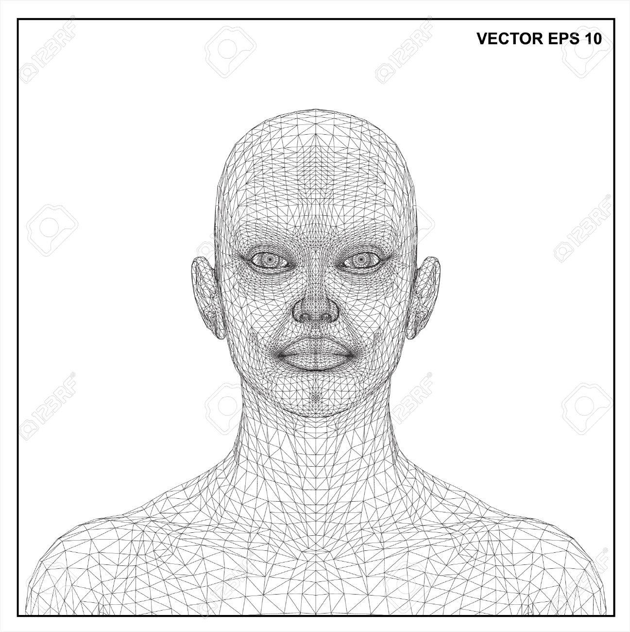 3d Head Of A Woman In A Wireframe View. Royalty Free Cliparts ...