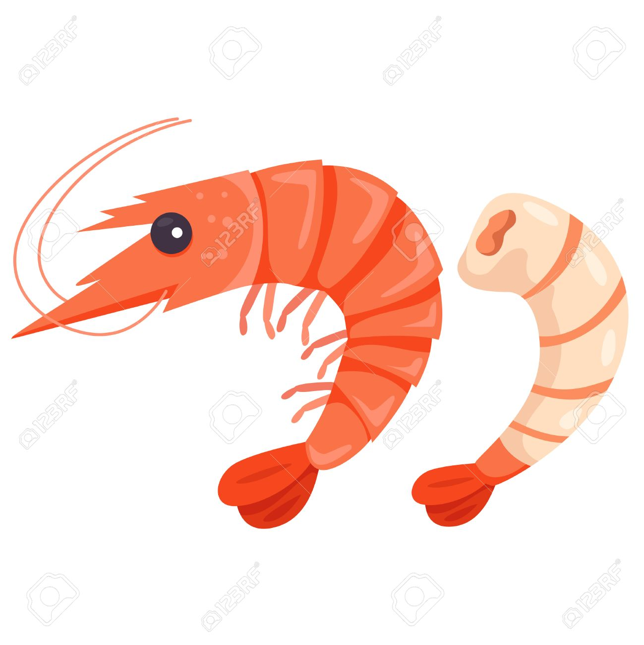 23 104 shrimp stock illustrations cliparts and royalty free shrimp rh 123rf com Shrimp Boat Clip Art Fried Shrimp Clip Art