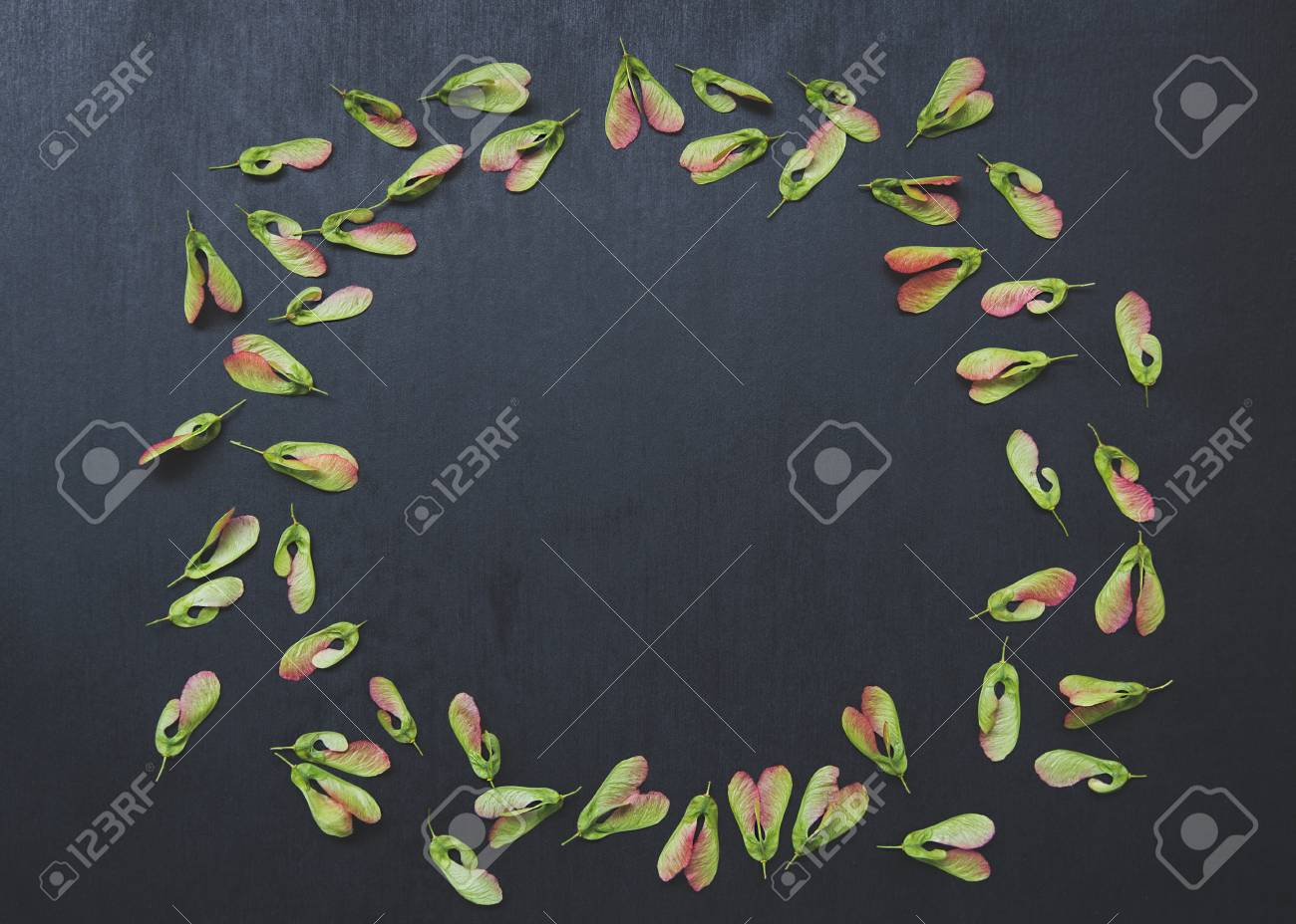maple seed pattern on a dark background