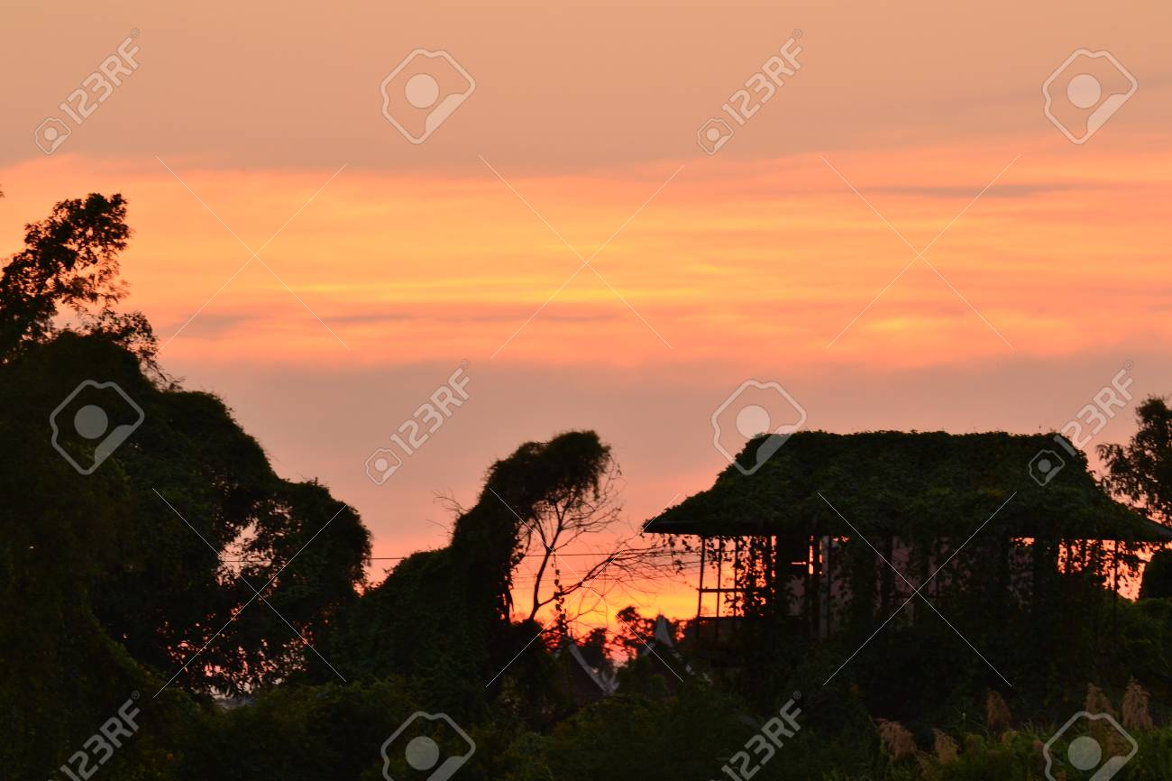 Old abandoned house in the garden,Ayutthaya province.Thailand. Stock Photo - 17194787