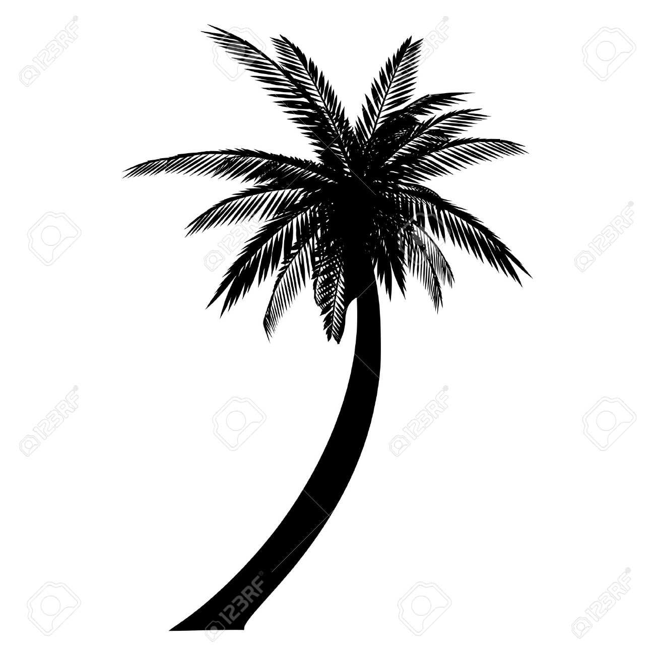 Isolated palm. Silhouette Stock Vector - 13285358