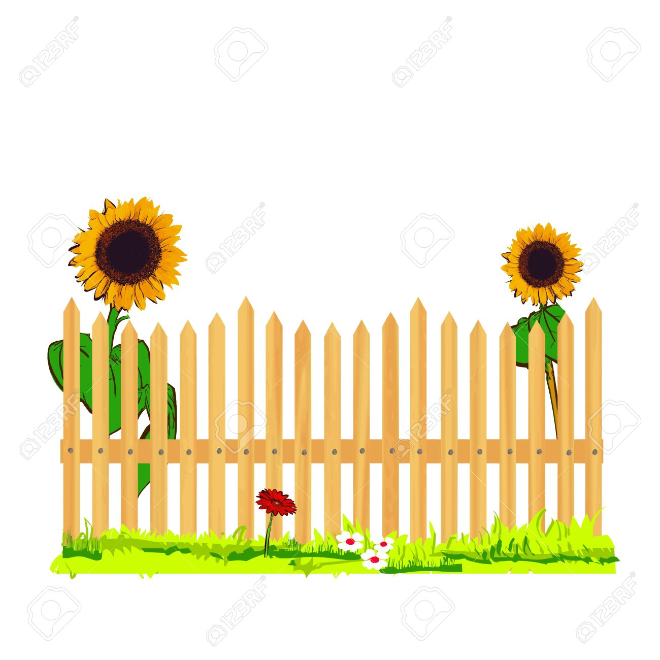 wooden fence and sunflowers - vector Stock Vector - 13285952