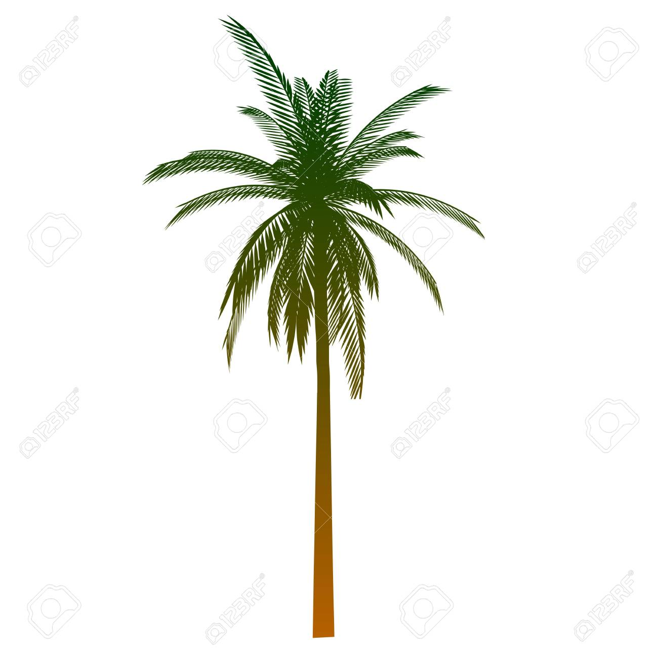 Palm. Isolated - vector Stock Vector - 13426363