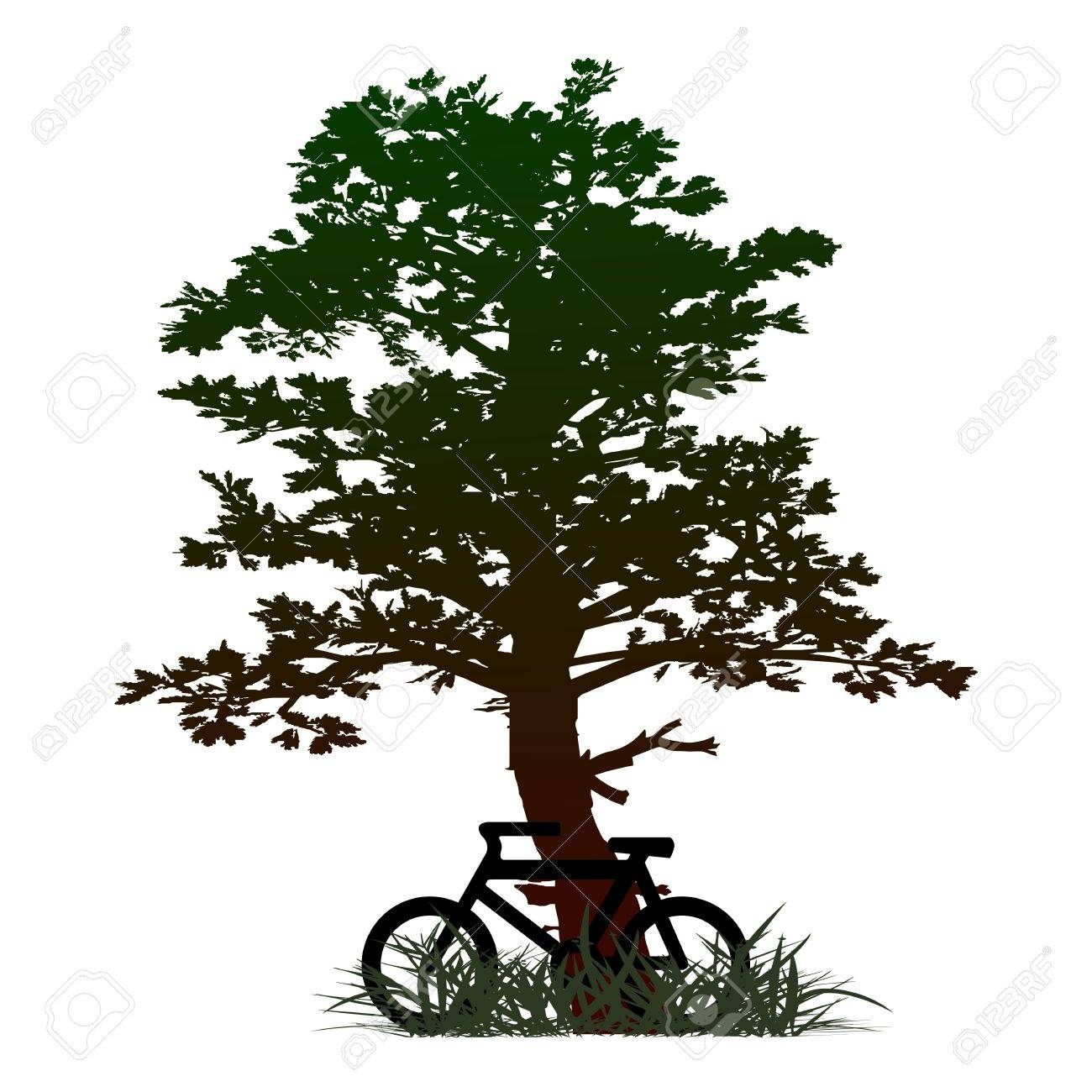 tree and bicycle - vector Stock Vector - 13494933