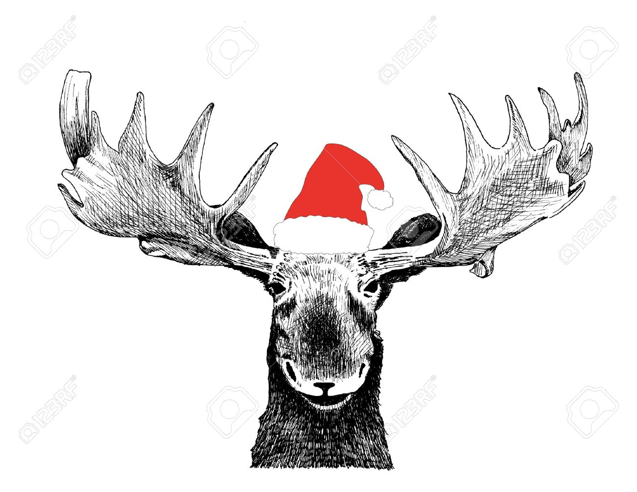 funny christmas moose with santa claus hat 11230940 - Christmas Moose