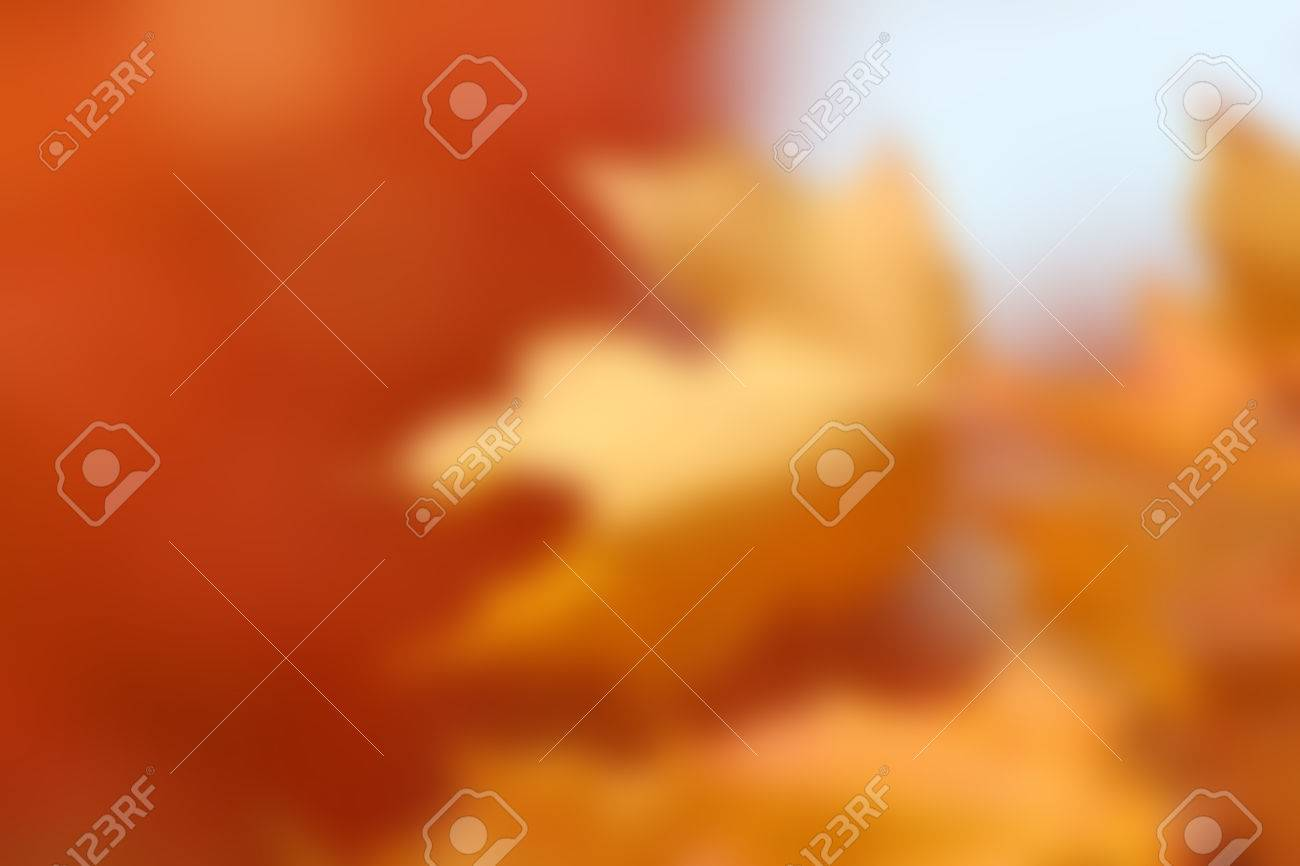 blurred orange maple leaves, blank autumn design for adding your own typography text or image for fall backgrounds or Thanksgiving - 43272884