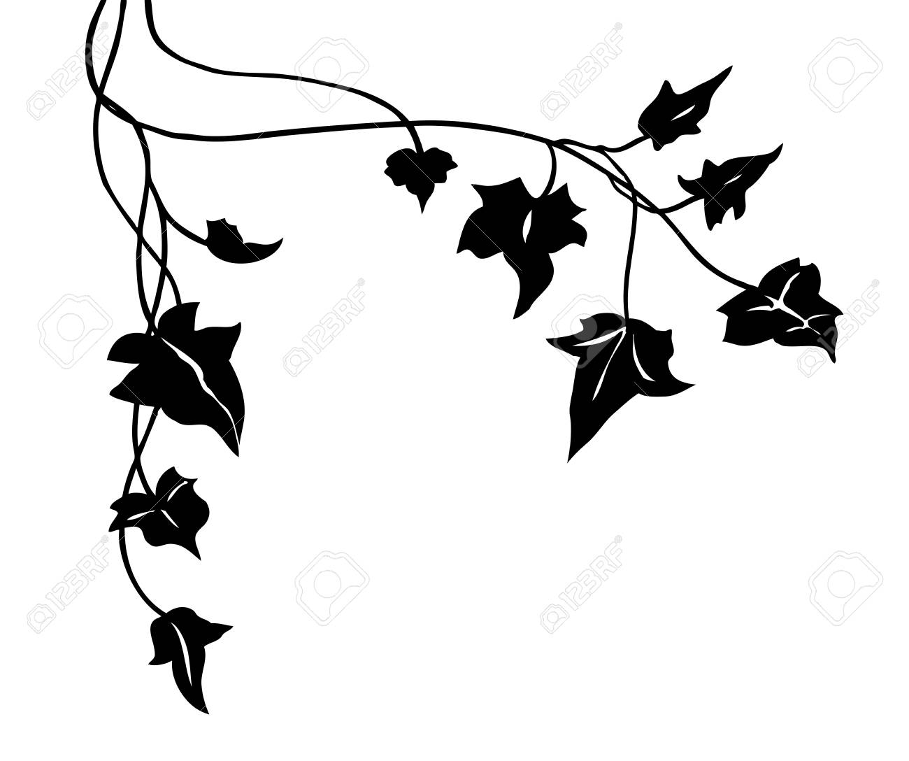 ivy vine silhouette vector, elegant black floral decorative border