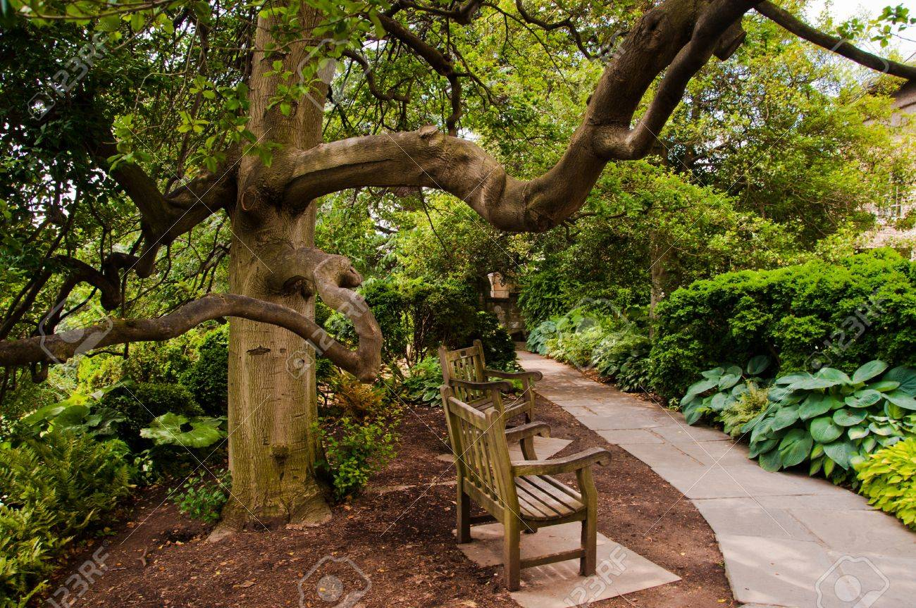 Path In The Bishops Garden, At The Washington National Cathedral ...