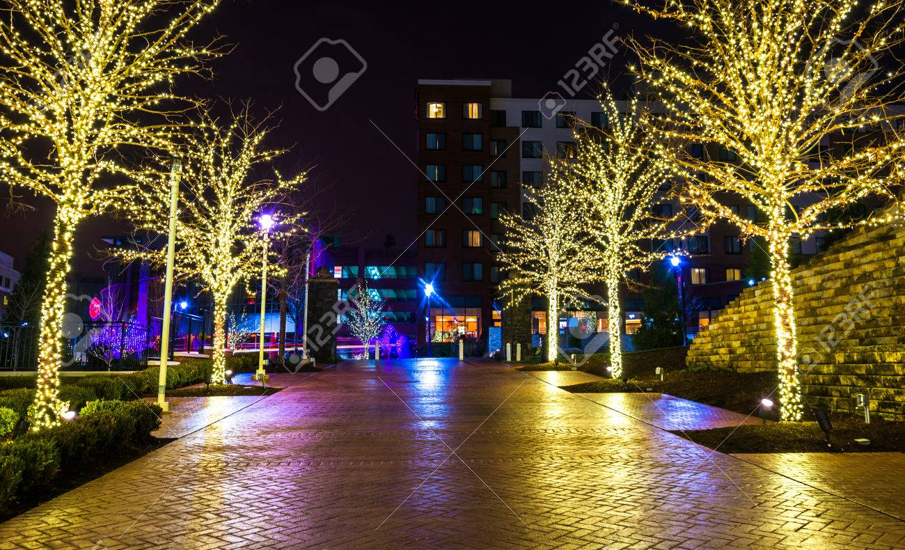 christmas lights on trees along a path in national harbor maryland at night stock - Christmas Lights Maryland