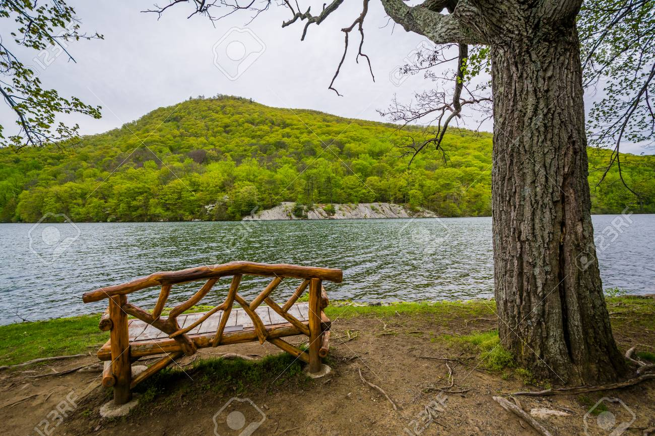 Bench Along Hessian Lake, At Bear Mountain State Park, New York. Stock Photo