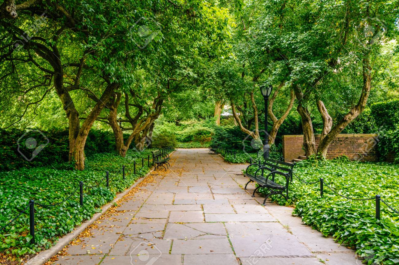 Tree Lined Walkway At The Conservatory Garden, In Central Park, Manhattan,  New