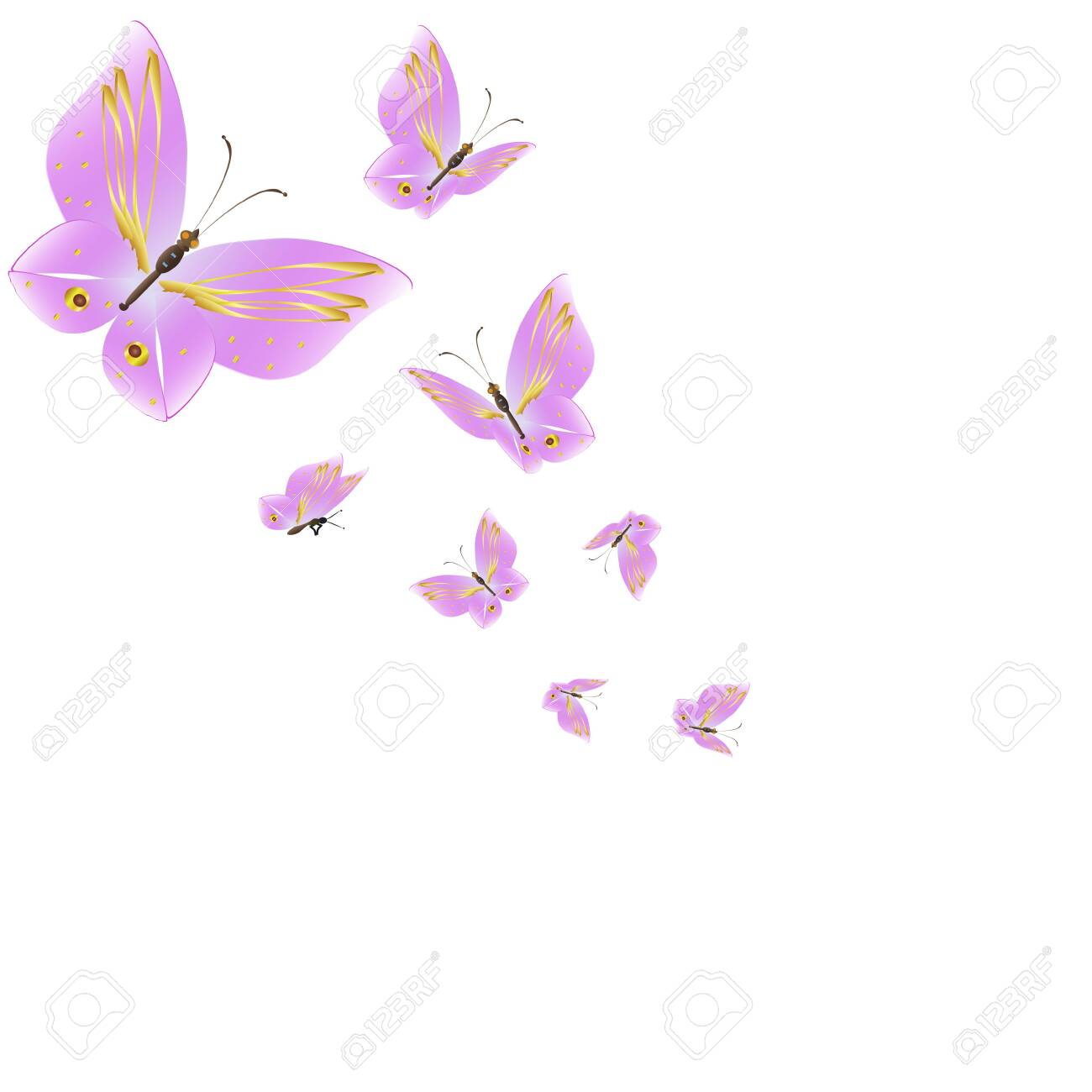 beautiful pink butterflies,isolated on a white - 123560042