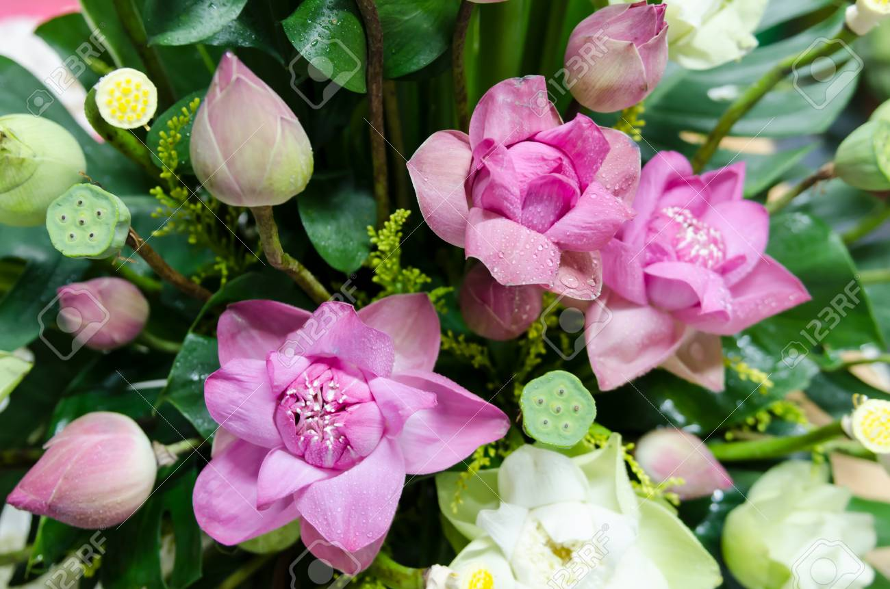 The Bunch Of Lotus Flowers Are Decoration For Wedding Ceremony Stock
