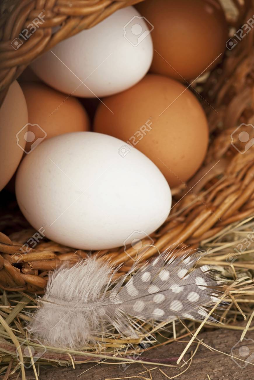eggs in a bucket Stock Photo - 13626364