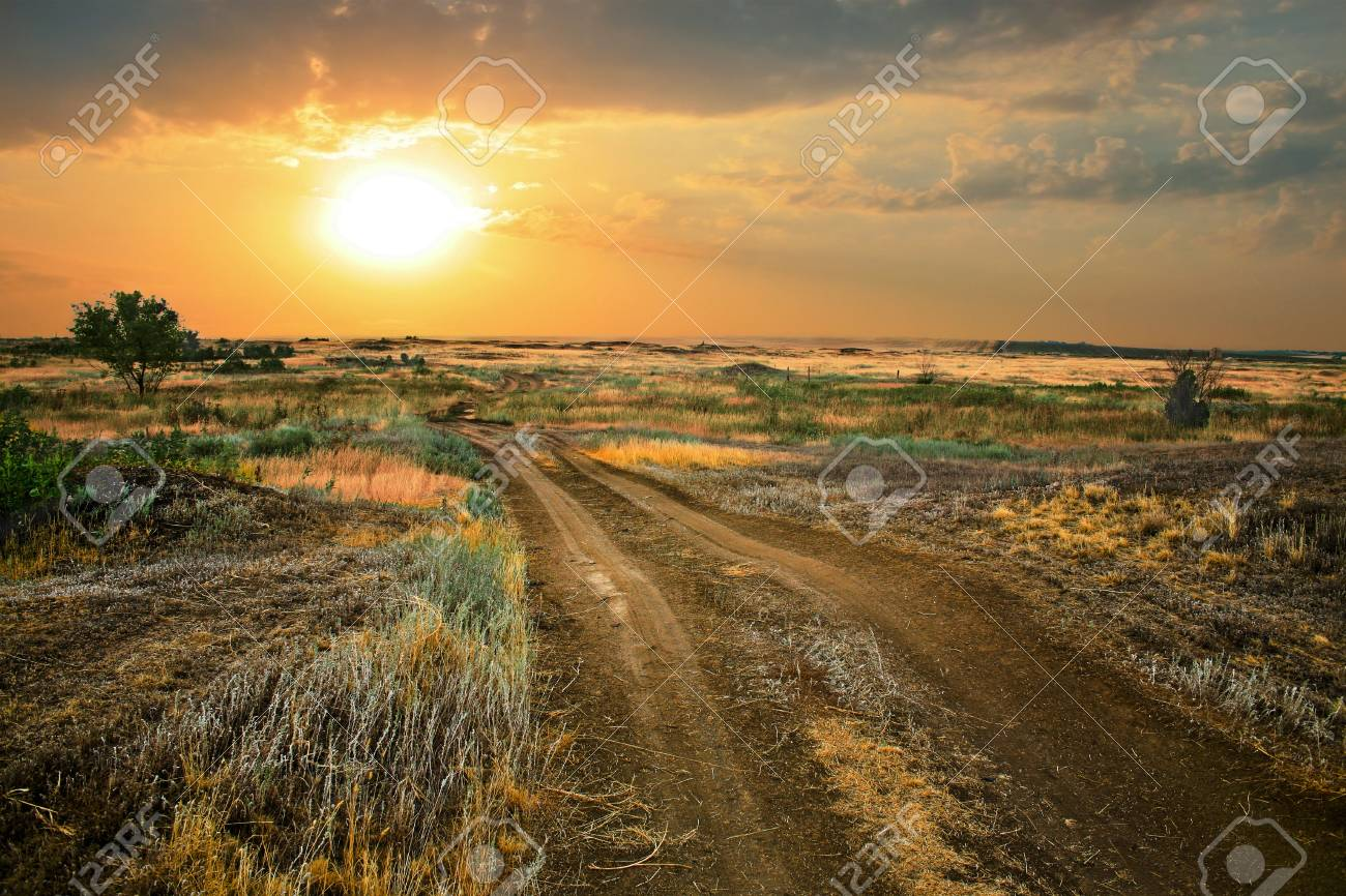 Beautiful landscape with field and  sky on  sunset Stock Photo - 12878706