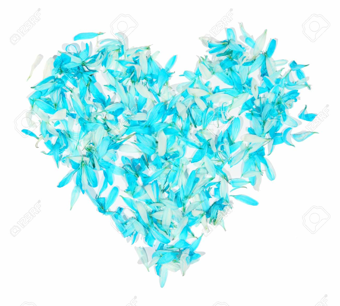 Heart from the petals  on a white background, to the day of Sainted Valentine Stock Photo - 5134180