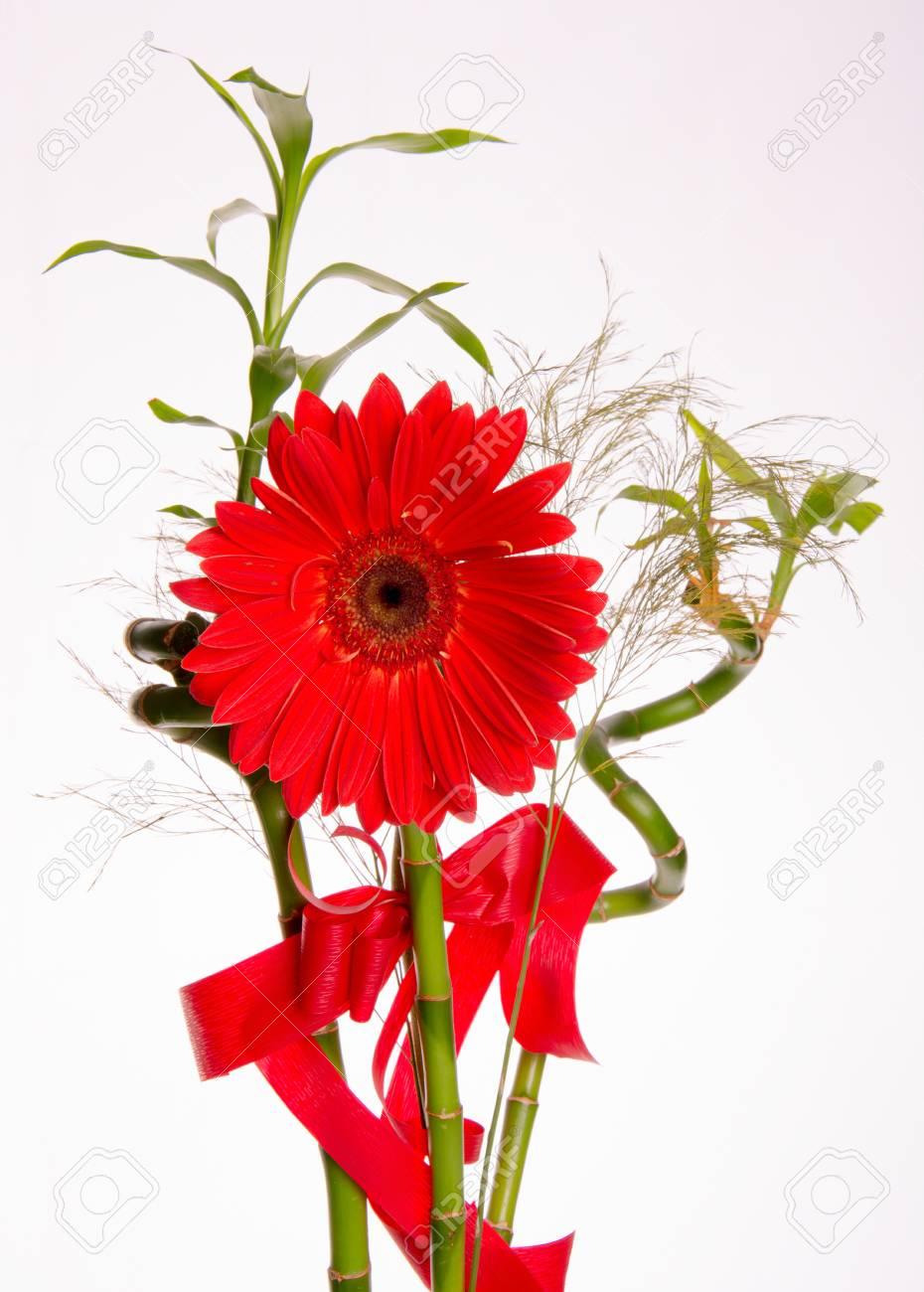 白い背景の花束と赤のガーベラの花