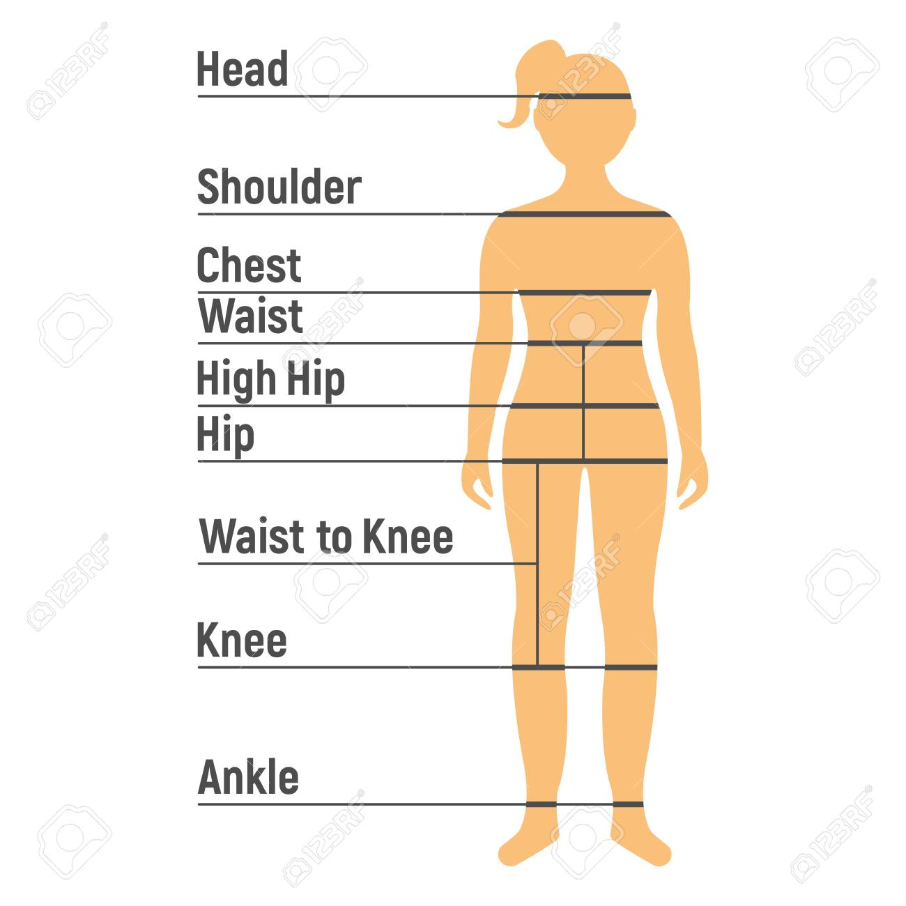 Girl Size Chart. Human front side Silhouette. Isolated on White Background. Vector illustration. - 110728465