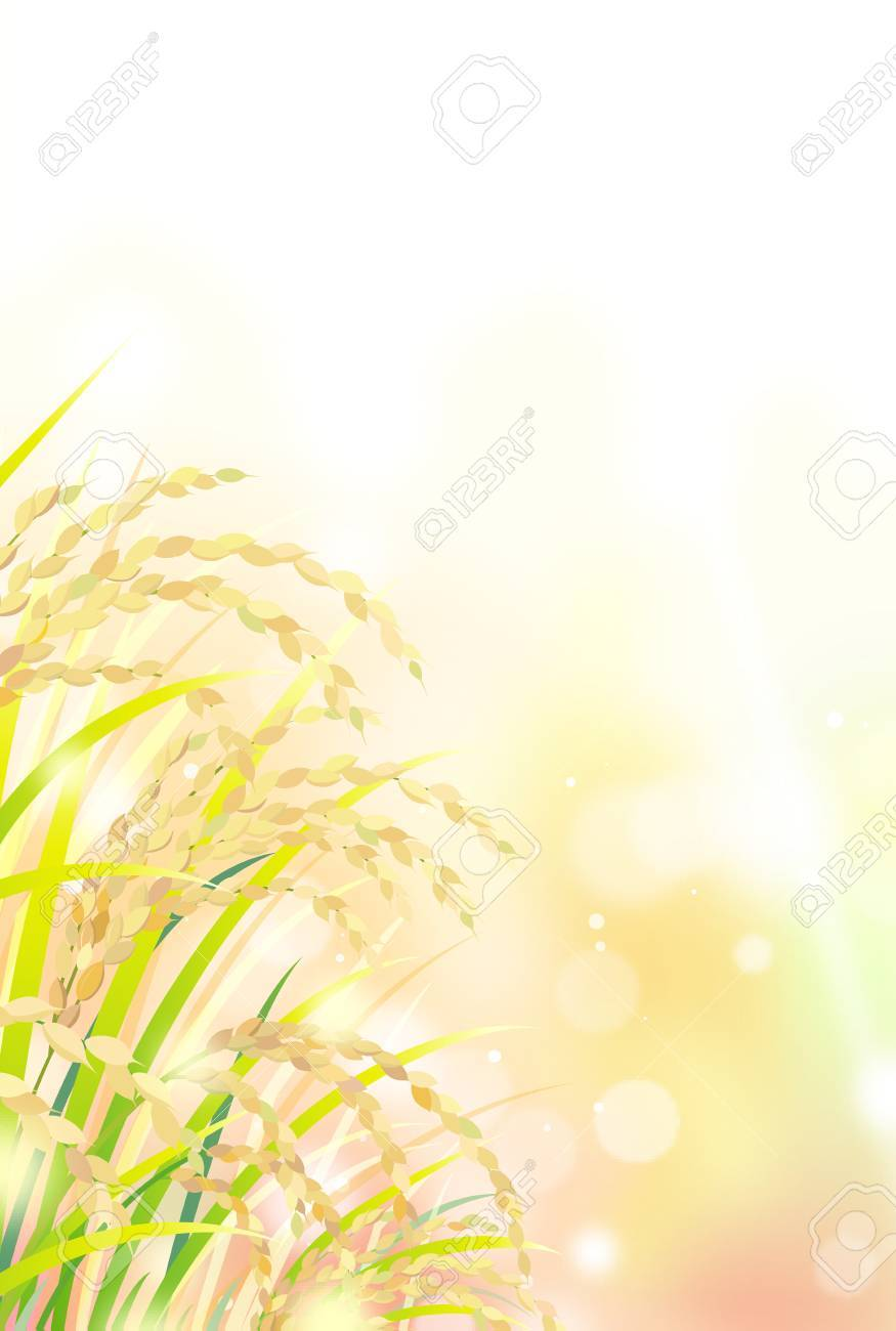 空の下の田んぼのイラスト素材 ベクタ Image 85014887